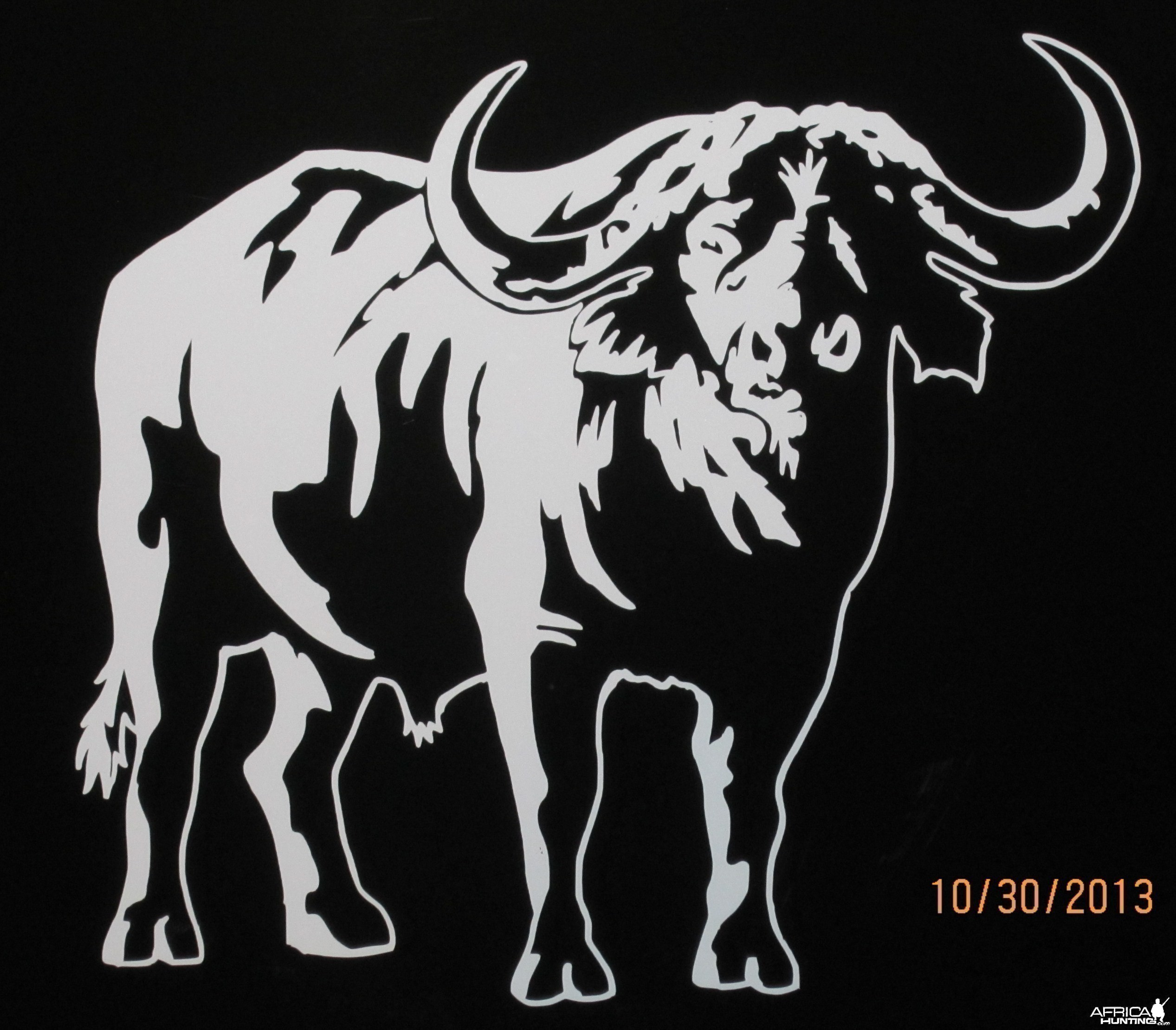 Bufalo Decal Stickers