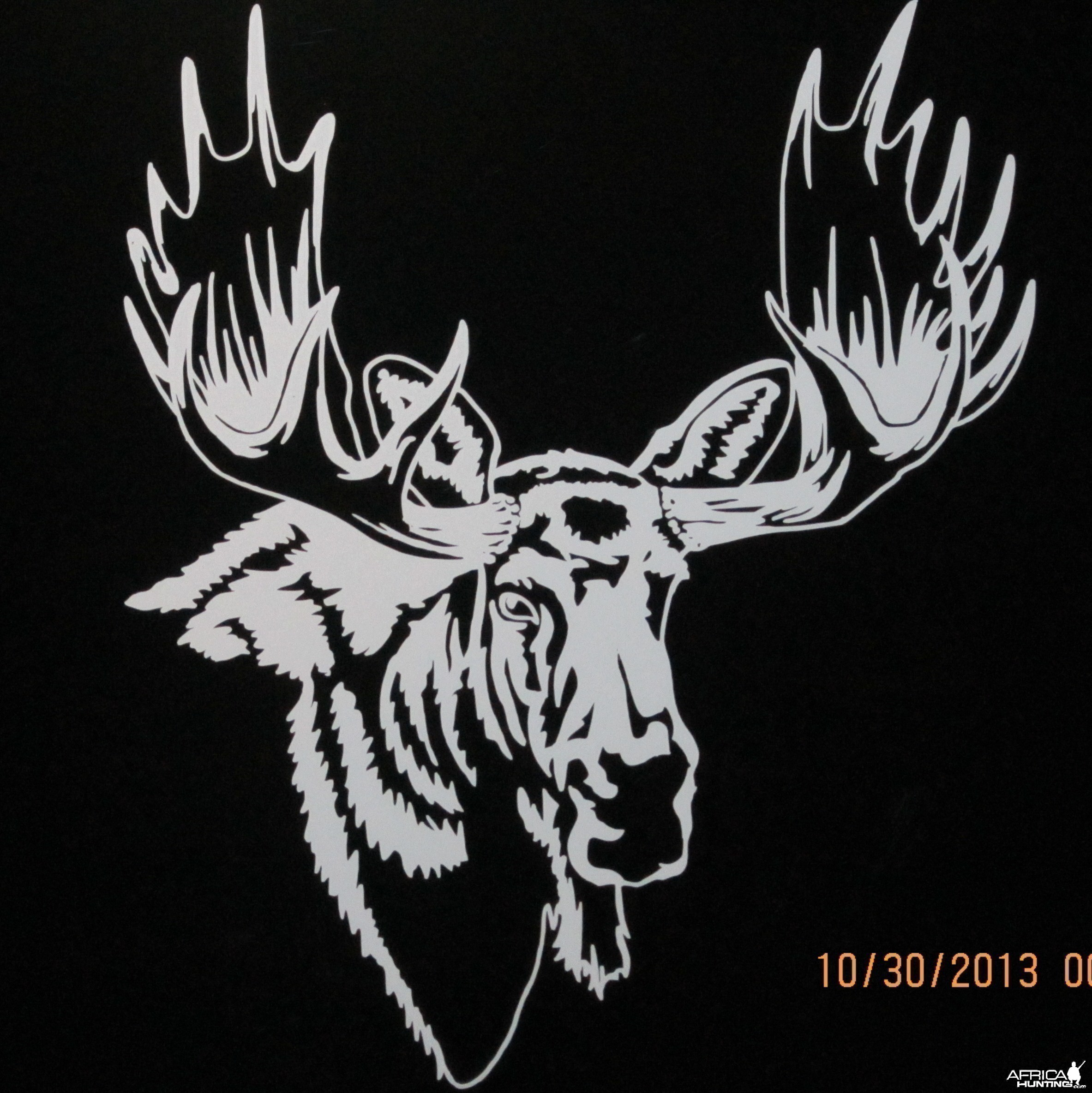 Moose Decal Stickers