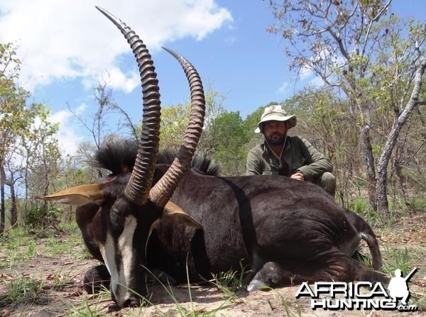 Sable Selous Tanzania