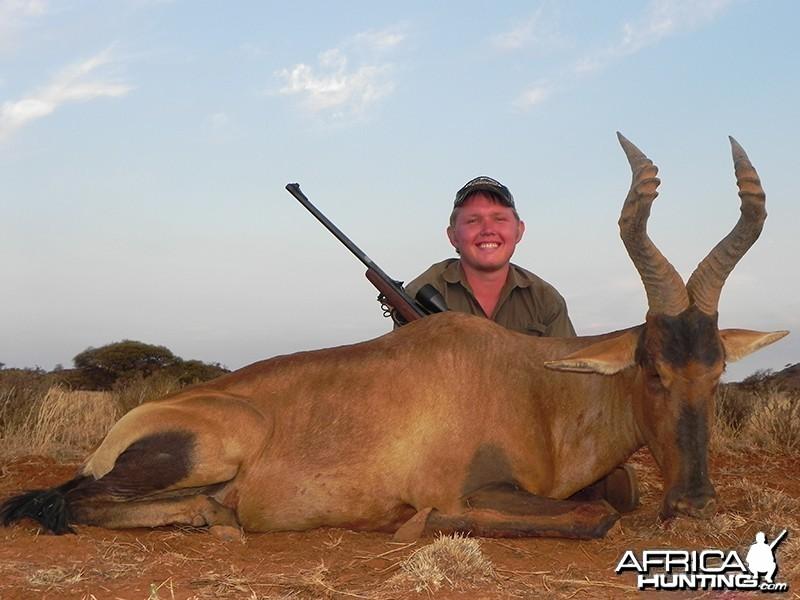 Red Hartebeest hunt with Wintershoek Johnny Vivier Safaris