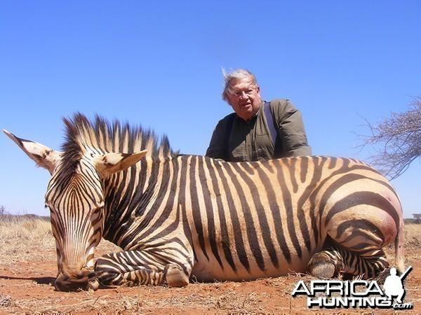 Hartmann's Zebra hunt with Wintershoek Johnny Vivier Safaris