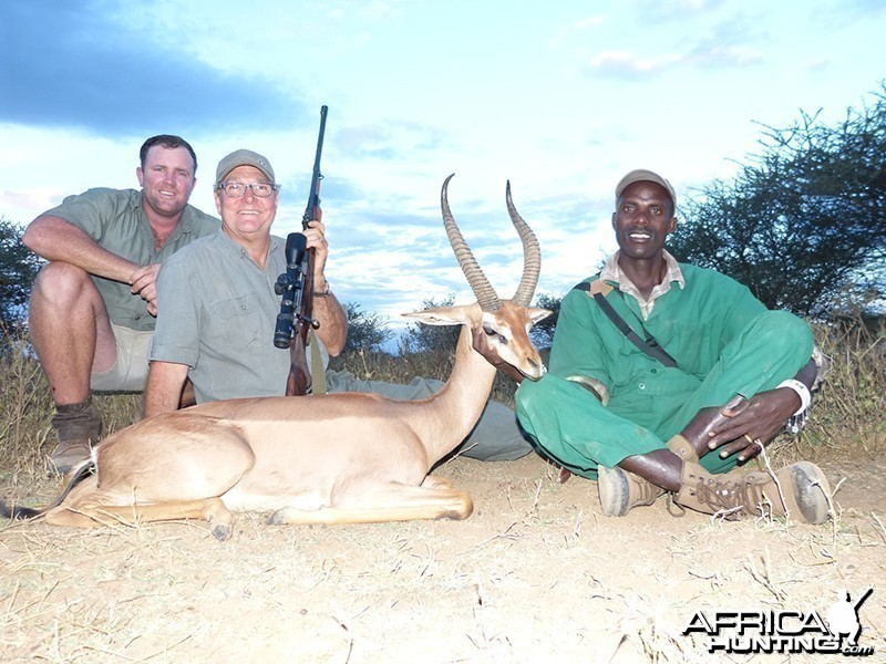 Gerenuk hunt with Wintershoek Johnny Vivier Safaris
