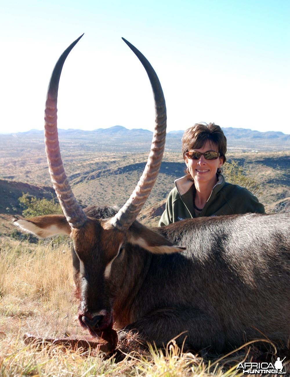 Waterbuck Namibia 2010