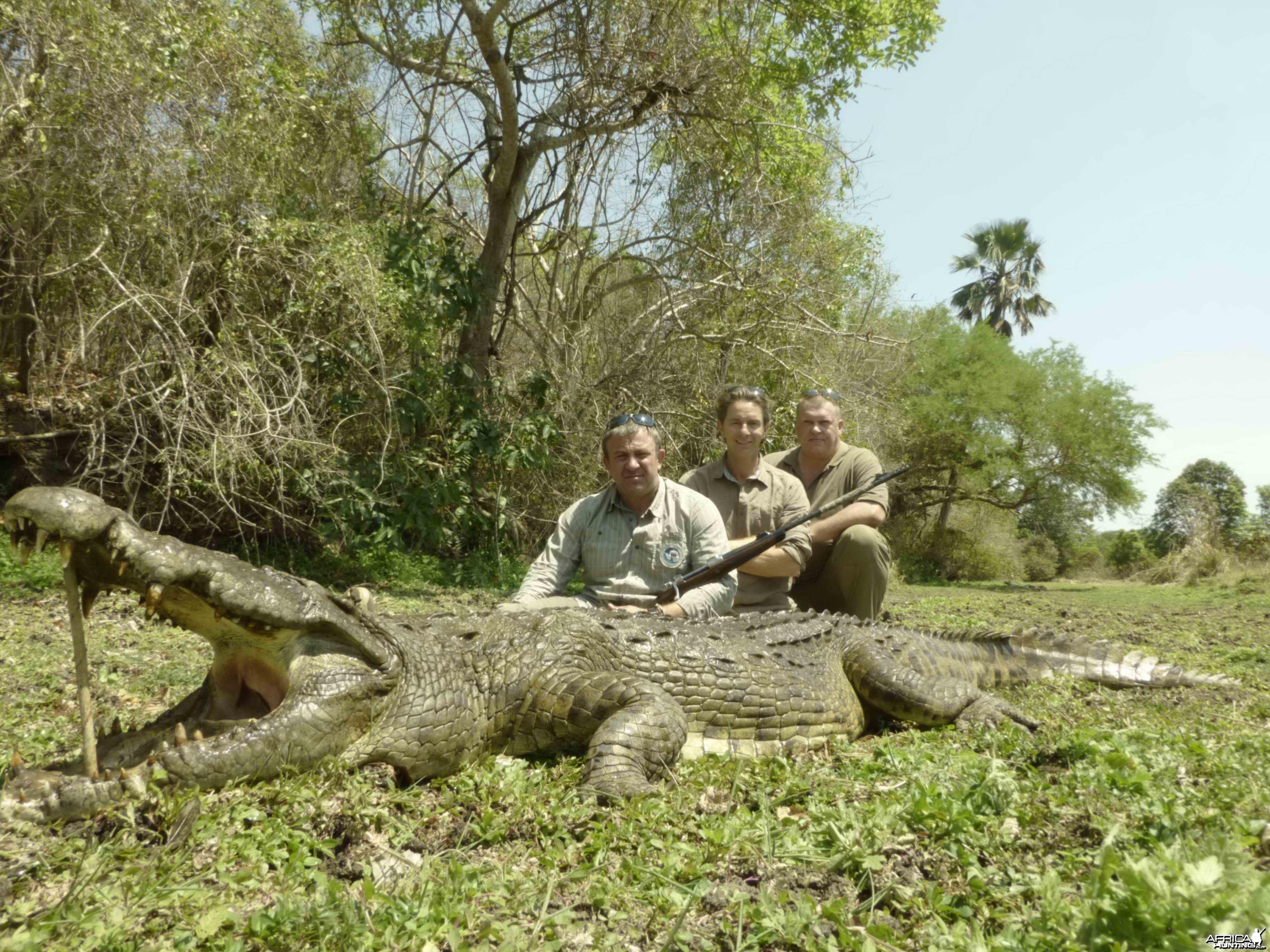 Croc 2 Selous