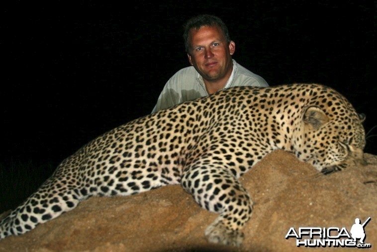 ~ Leopard - Lebombo Foothills, Mozambique ~