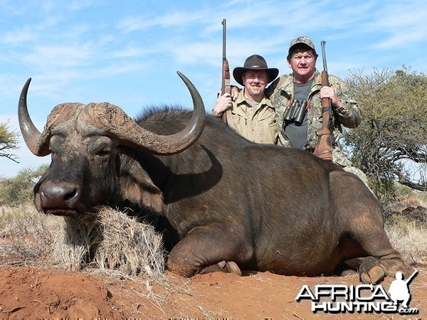 Buffalo hunt with Wintershoek Johnny Vivier Safaris