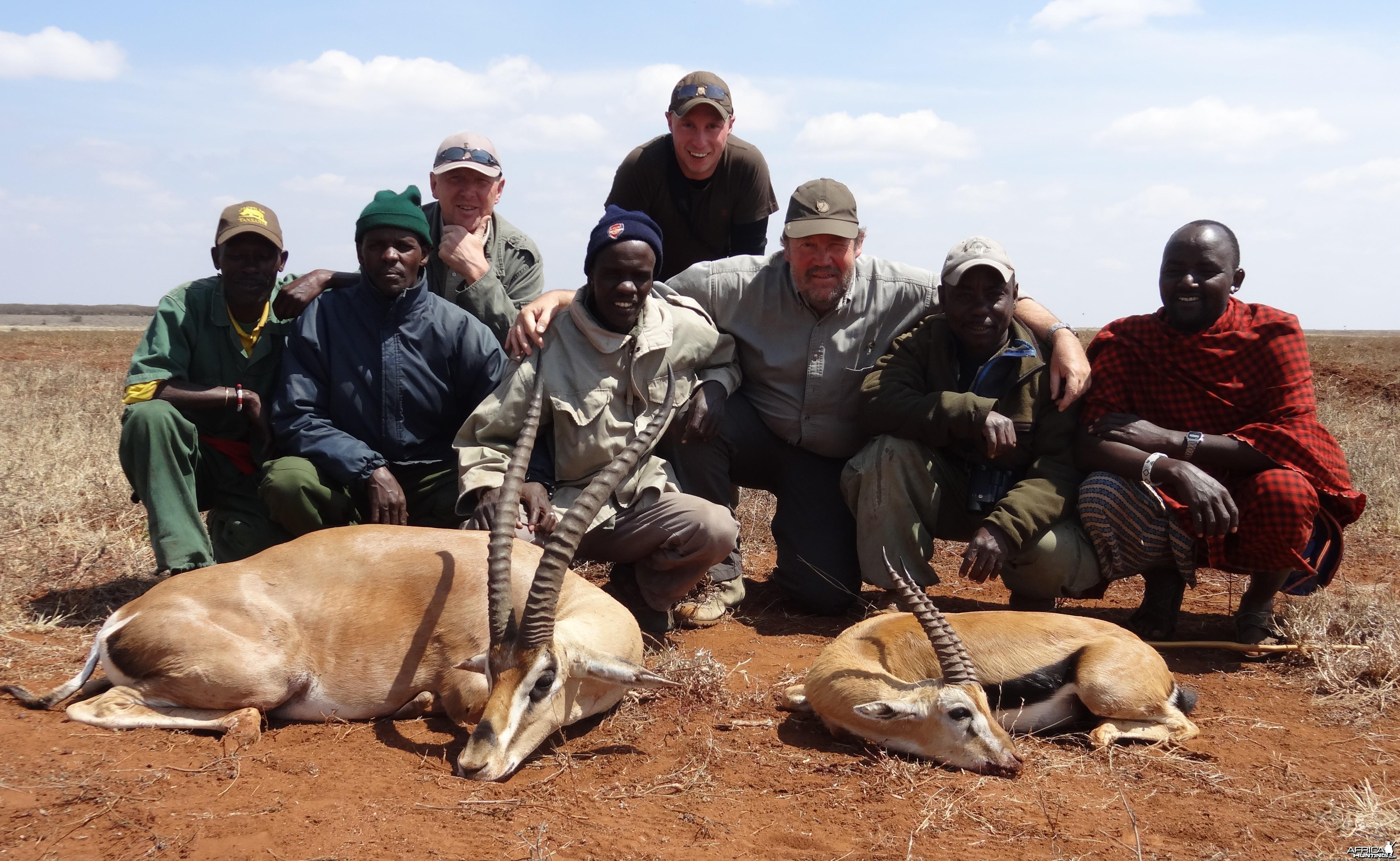Gazelle Masailand