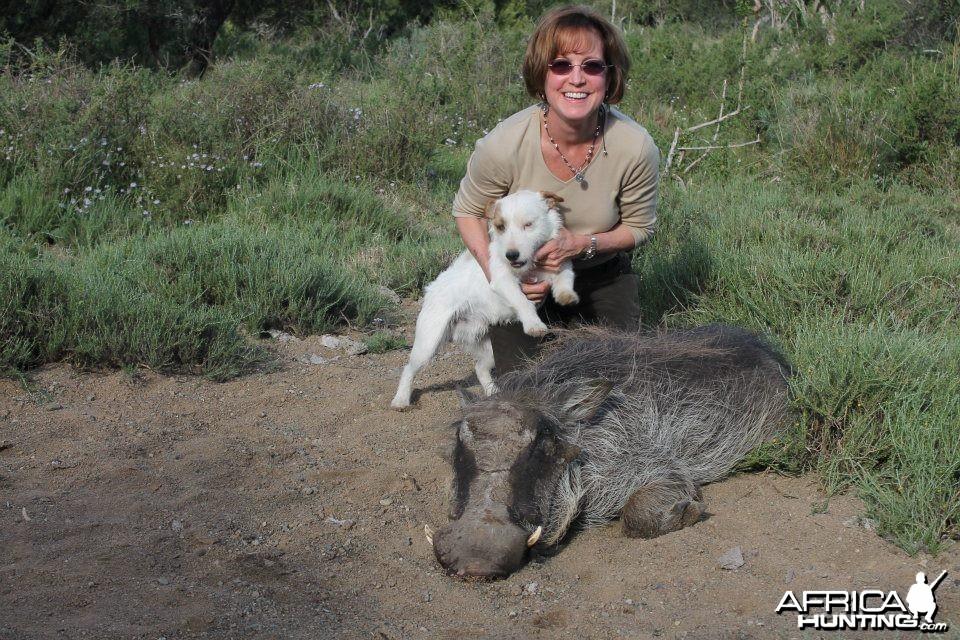 Culling Warthog