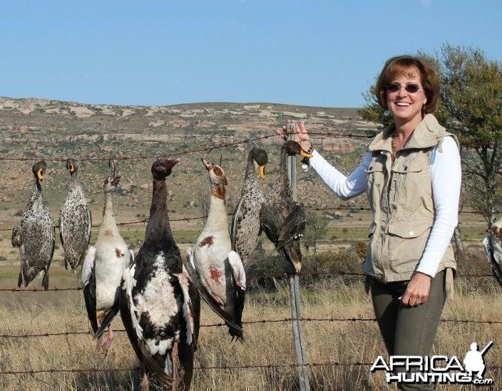 Bird Hunting in Stormberg