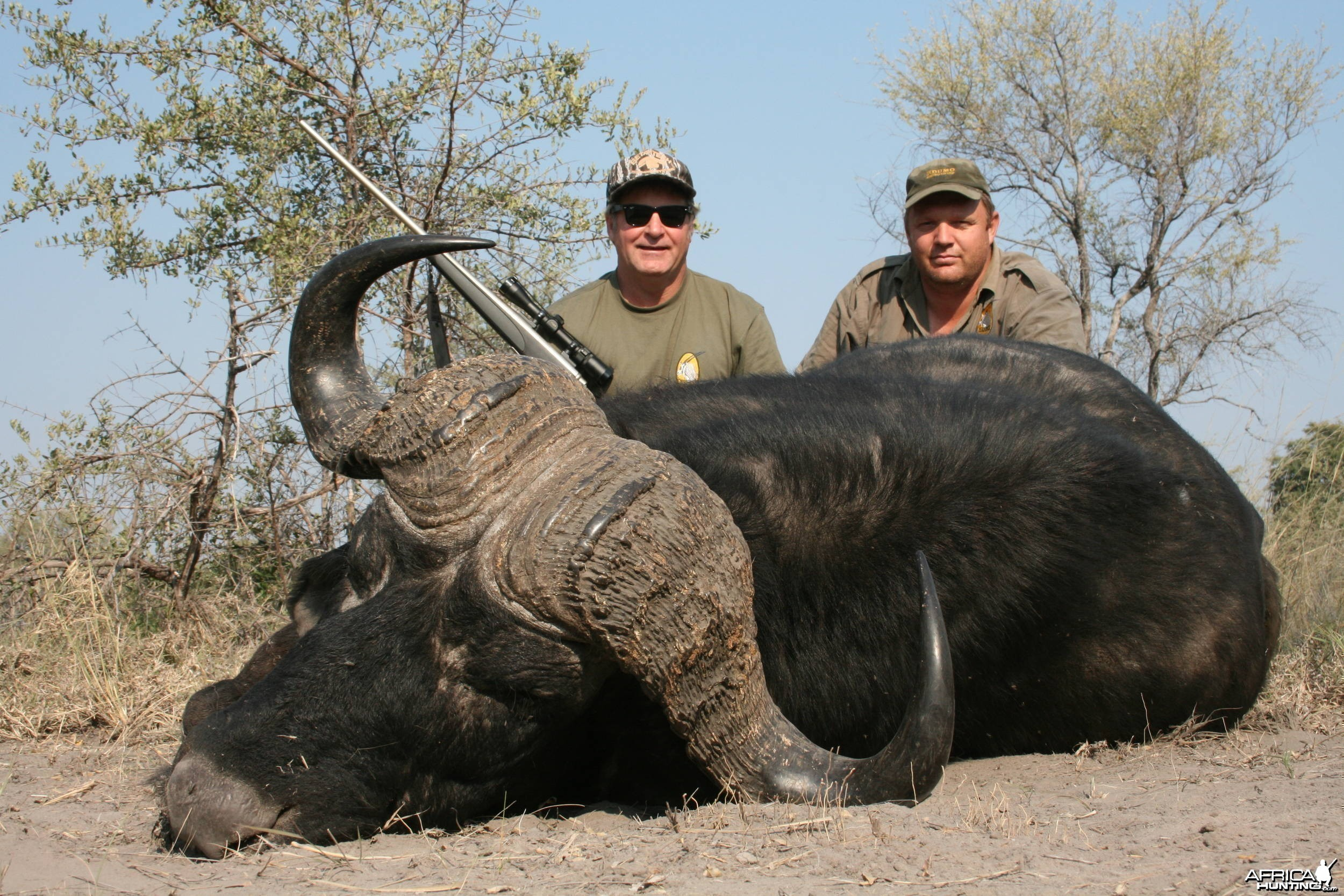 Caprivi buffalo hunt 2009