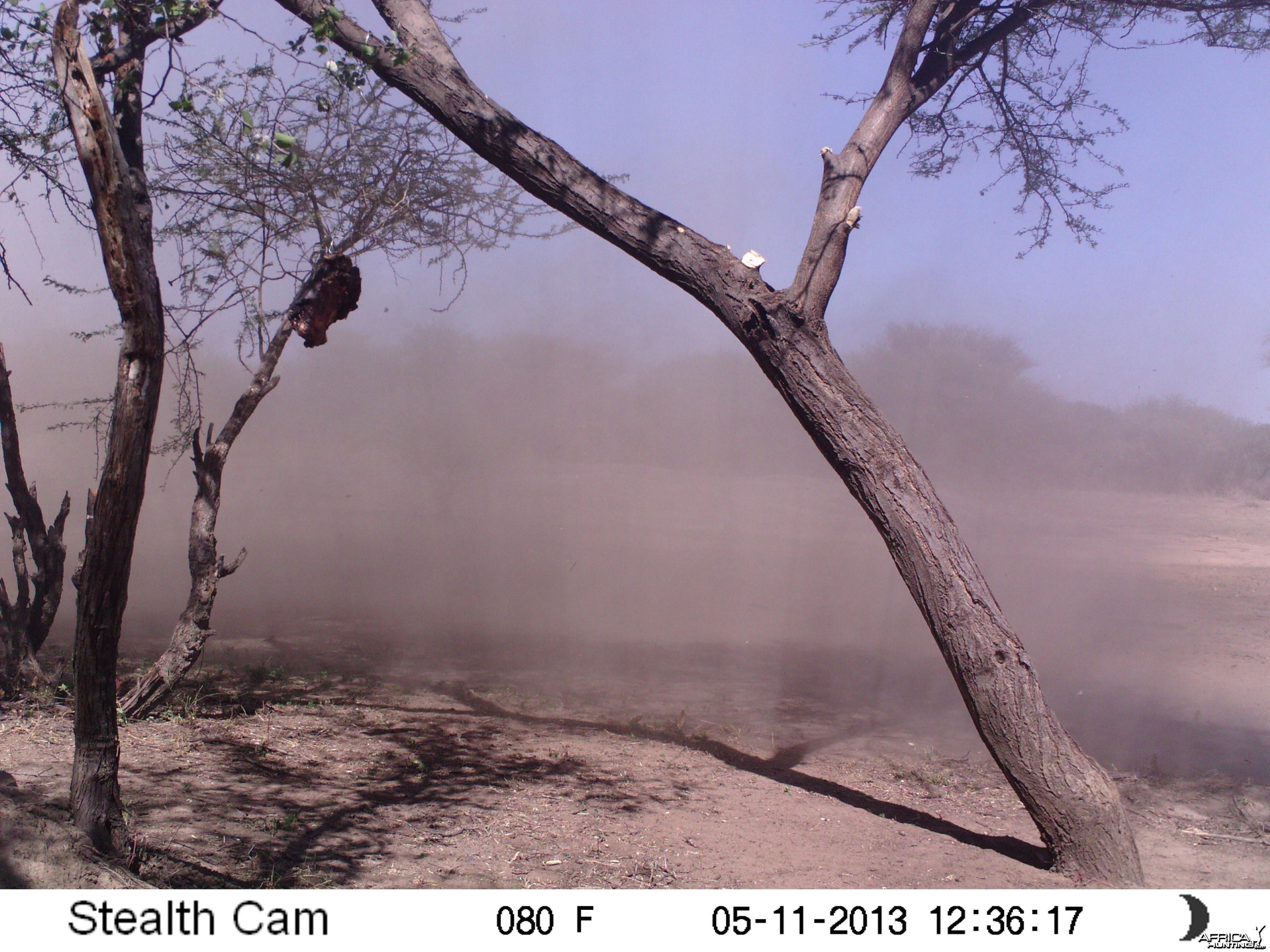 Wind Sand Trail Camera