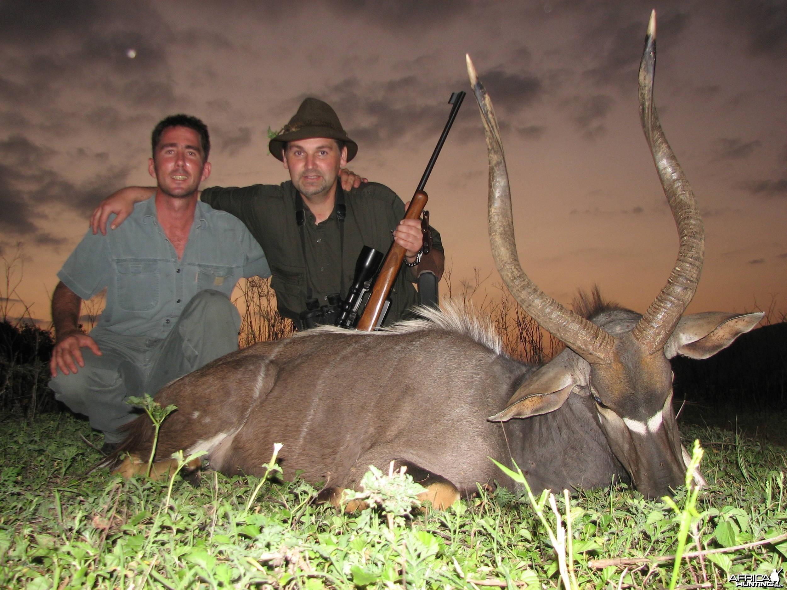 """Hunting Nyala 31"""""""