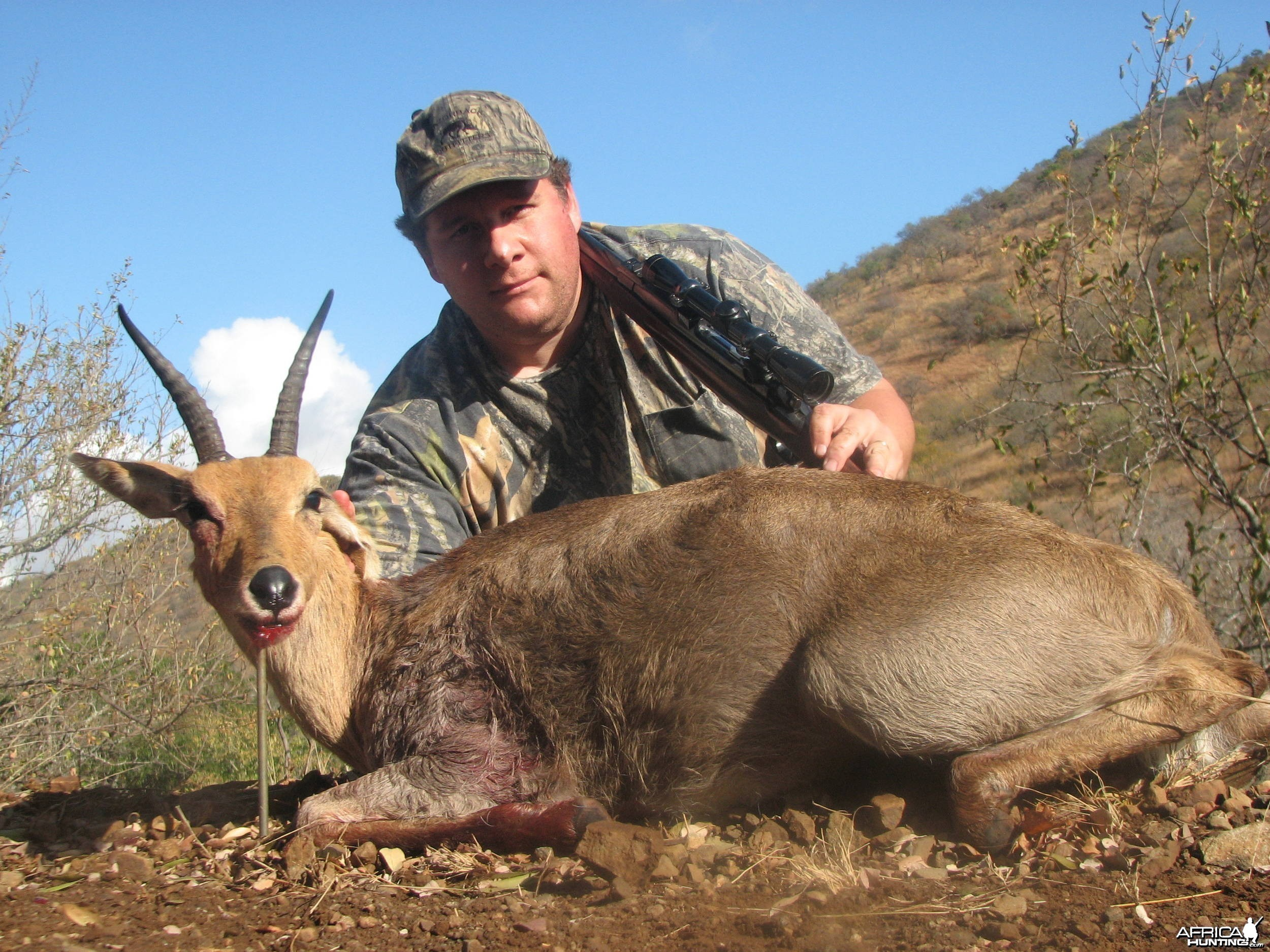 Hunting Mountain Reedbuck