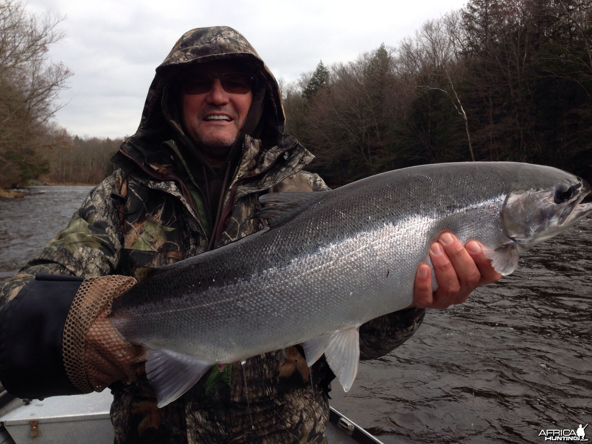 Steelhead anyone?