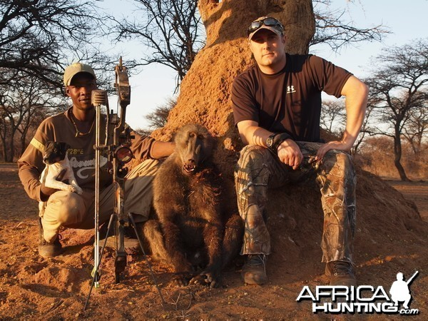 Baboon hunted with Ozondjahe Hunting Safaris in Namibia