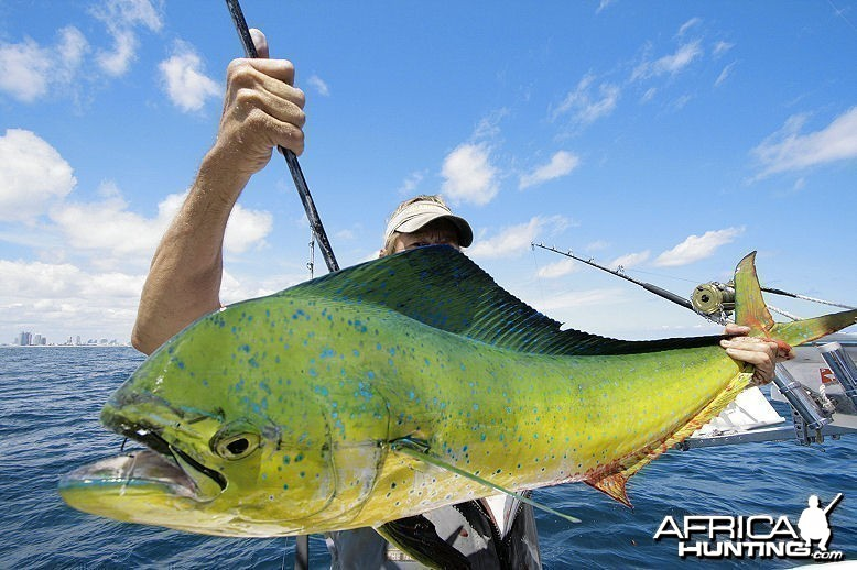 Fishing Monster Mahi