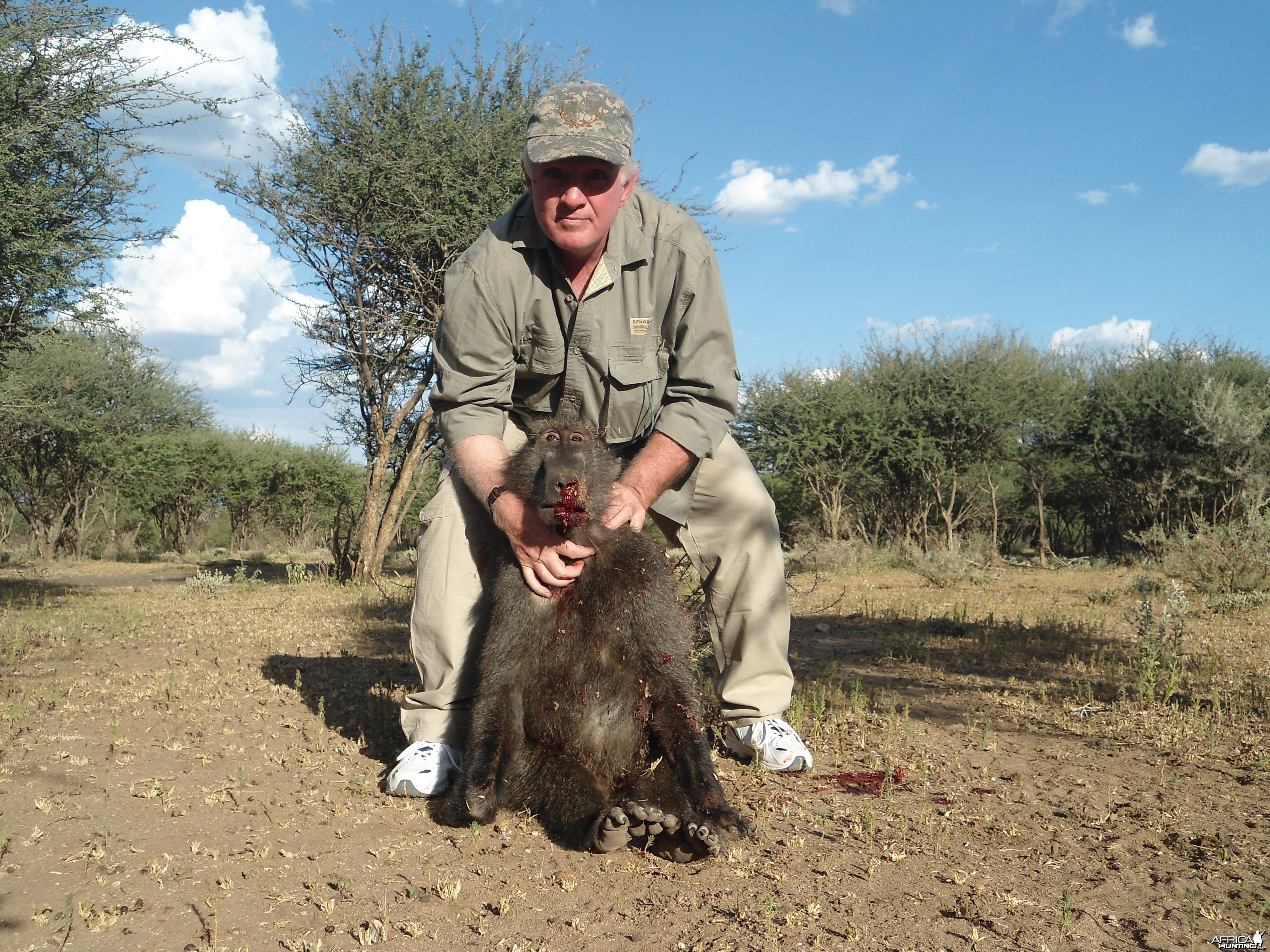 Chacma Baboon hunted with Ozondjahe Hunting Safaris in Namibia