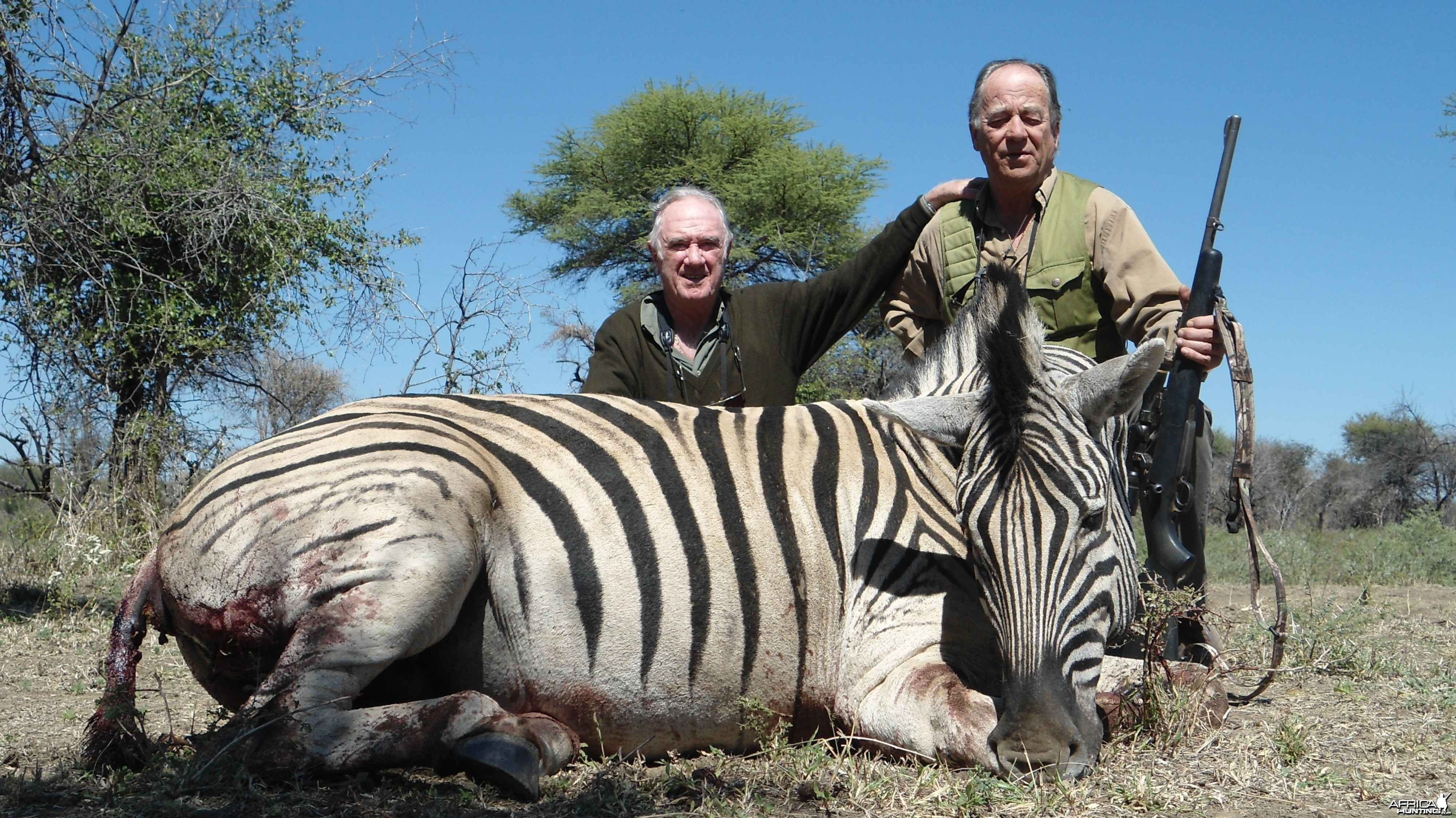 Burchell's Zebra hunted with Ozondjahe Hunting Safaris in Namibia