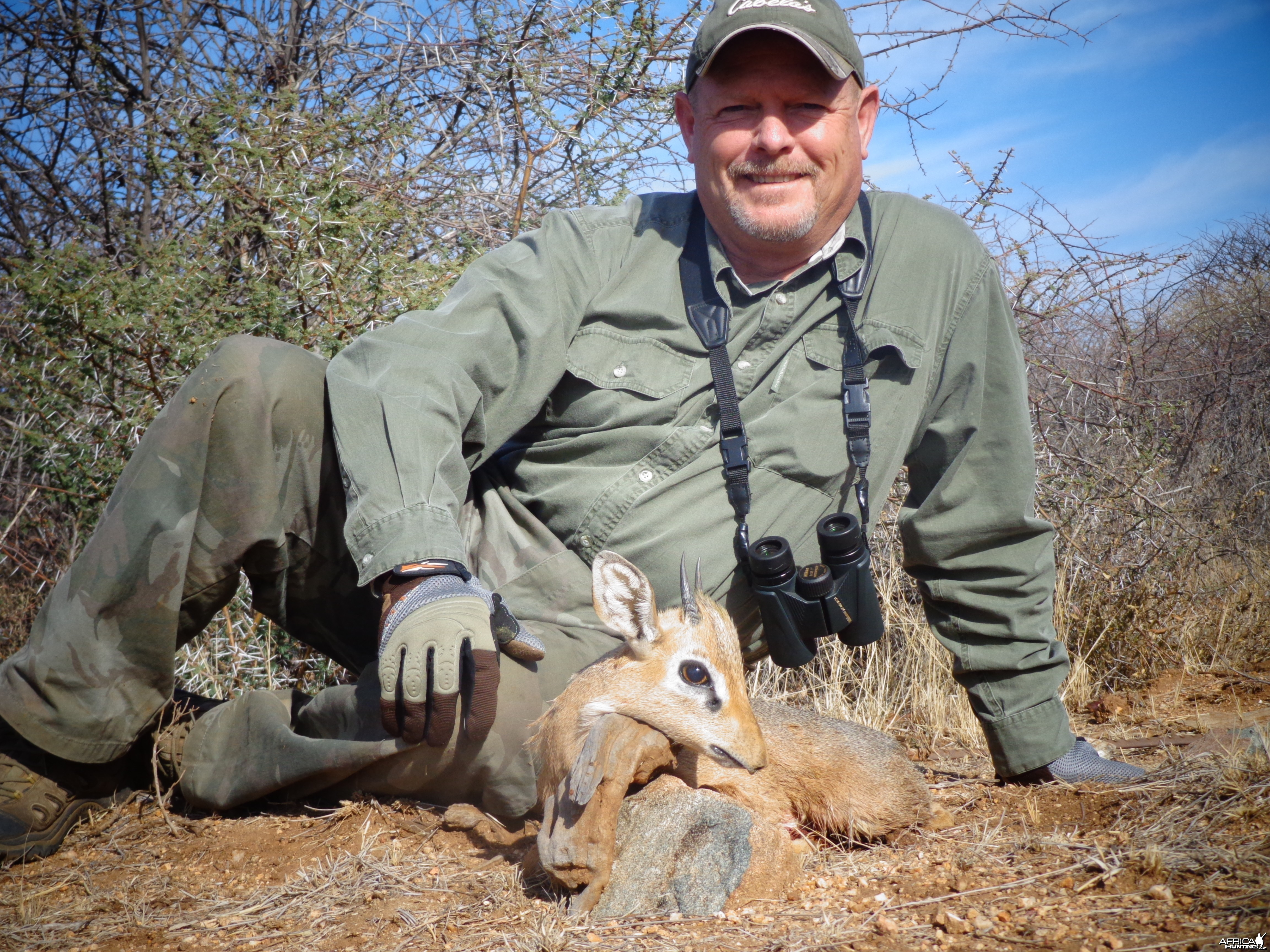 Damara Dik-Dik hunted with Ozondjahe Hunting Safaris in Namibia