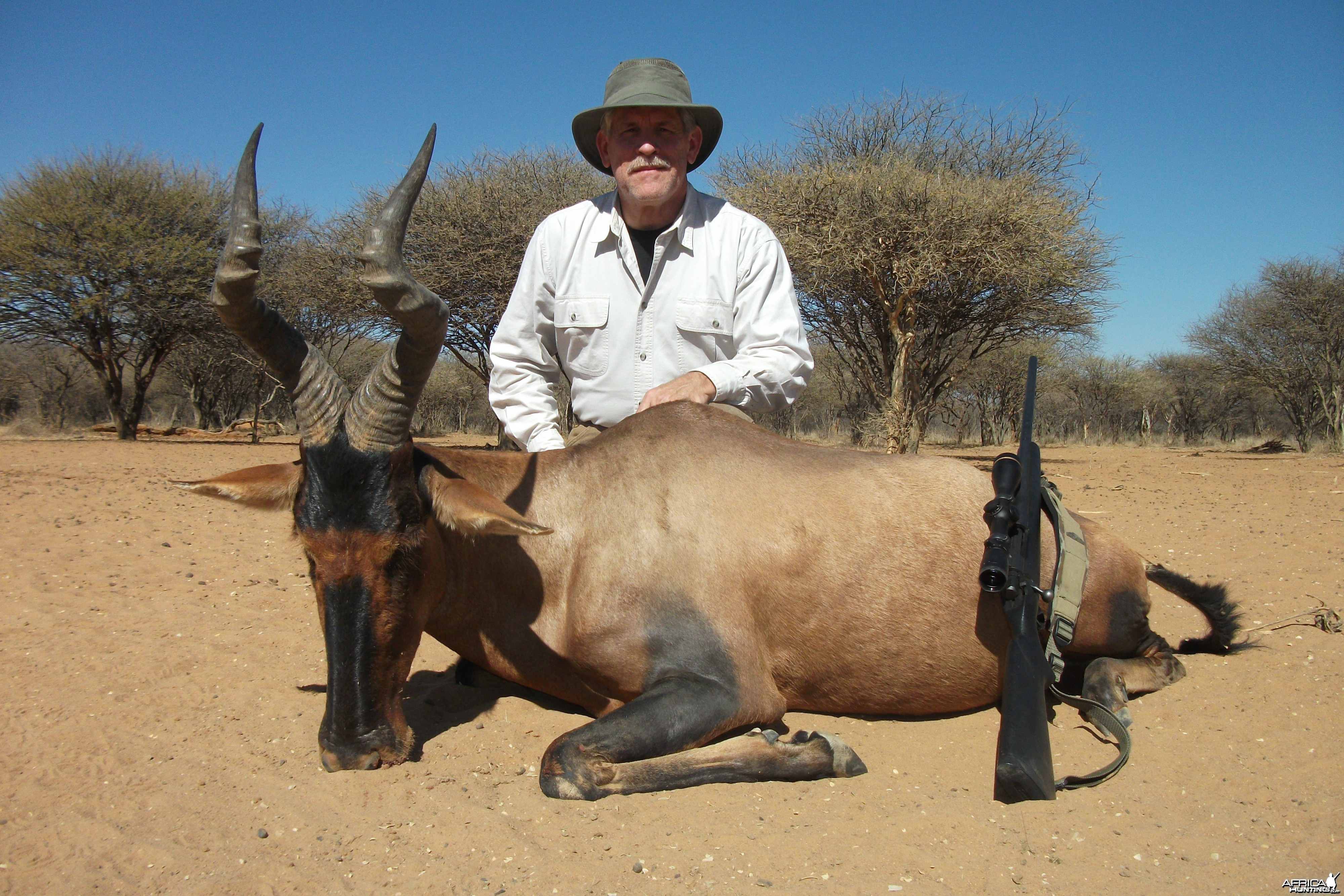Red Hartebeest hunted with Ozondjahe Hunting Safaris in Namibia