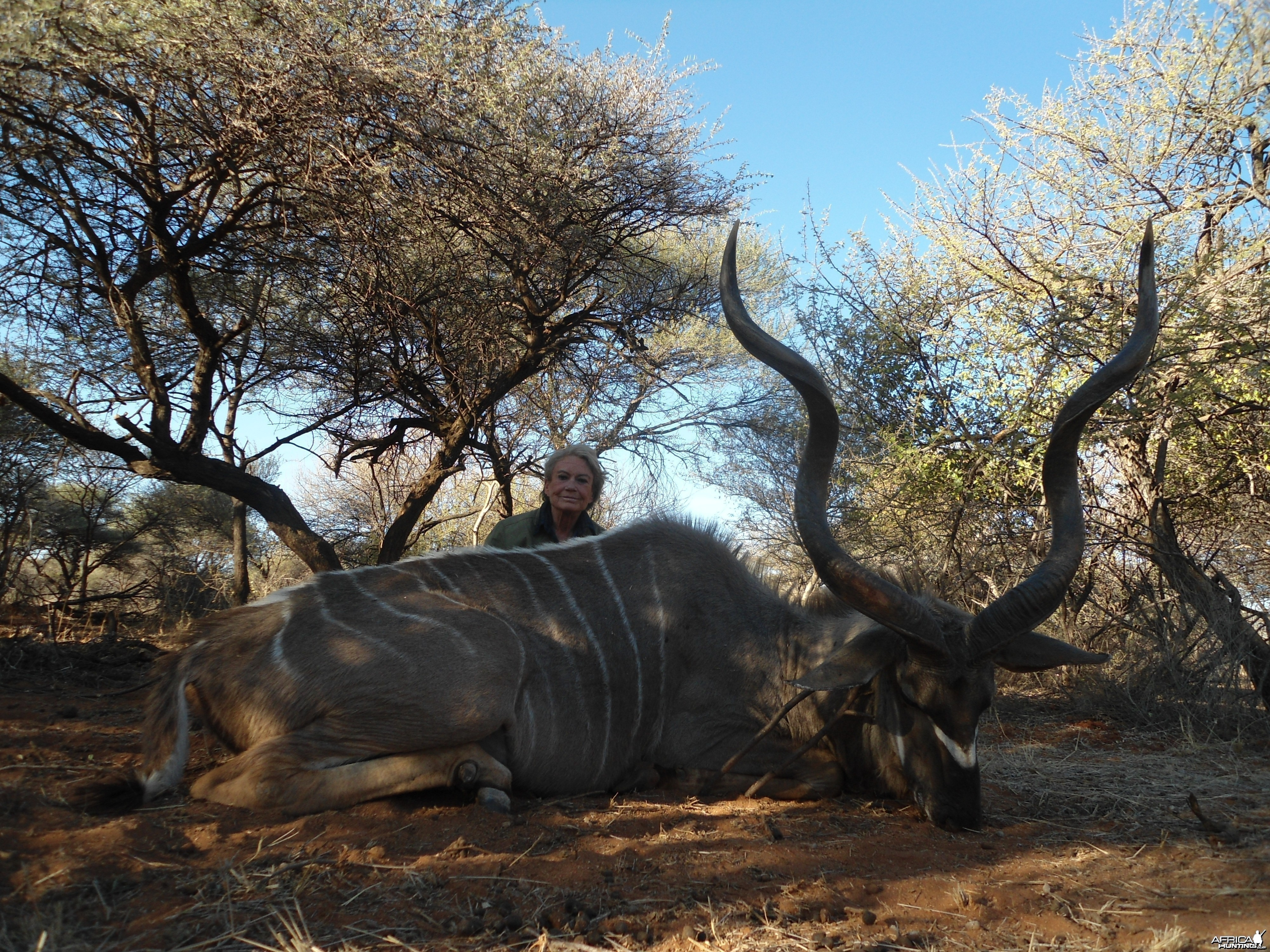 Greater Kudu hunted with Ozondjahe Hunting Safaris in Namibia