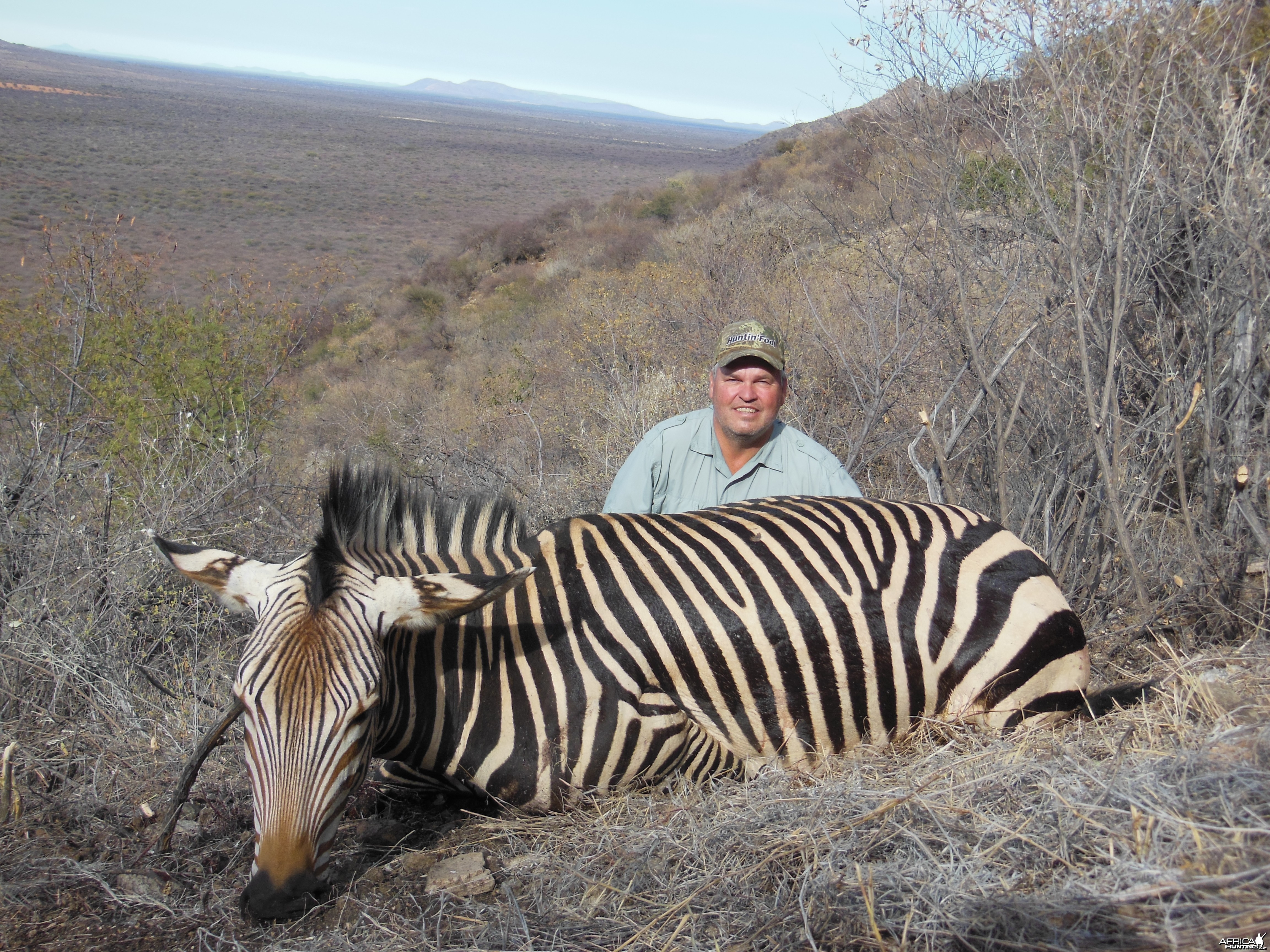 Hartmann's Zebra hunted with Ozondjahe Hunting Safaris in Namibia
