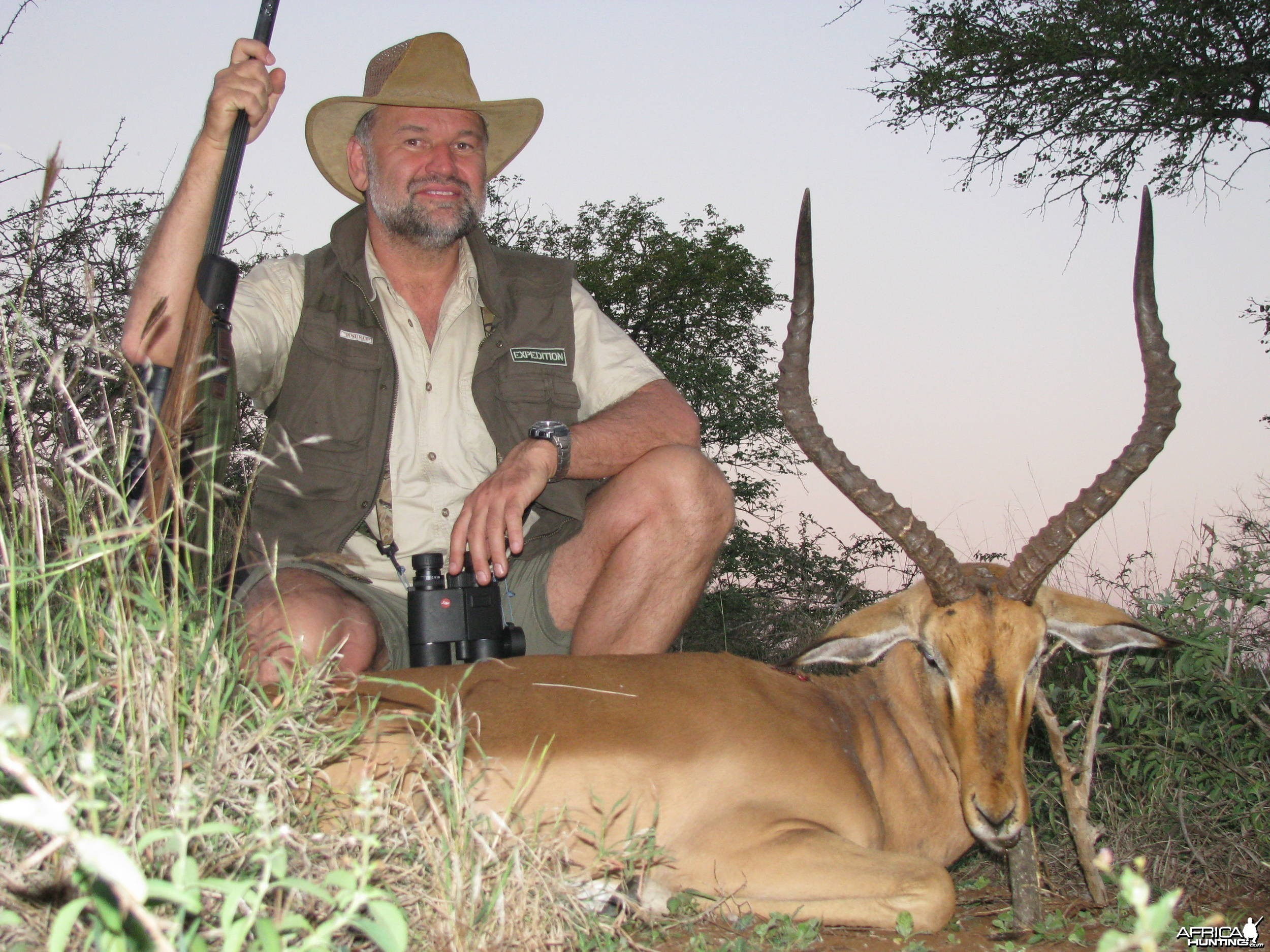 Impala Zululand