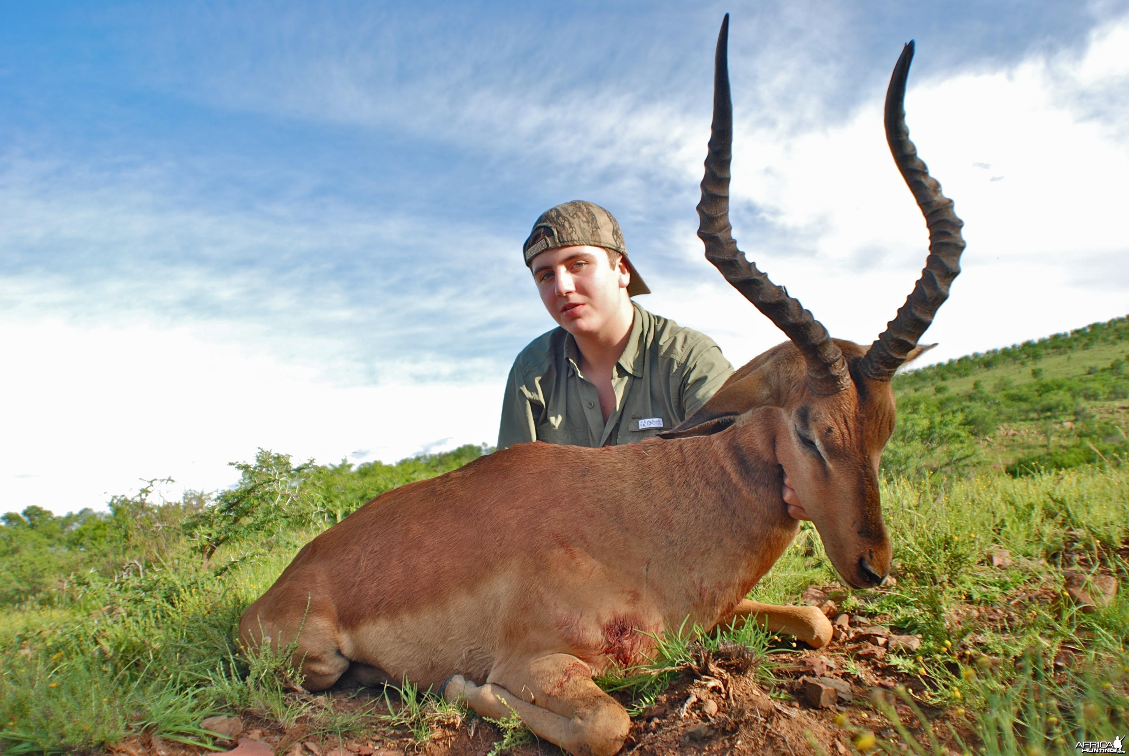 Impala ~ East Cape, RSA