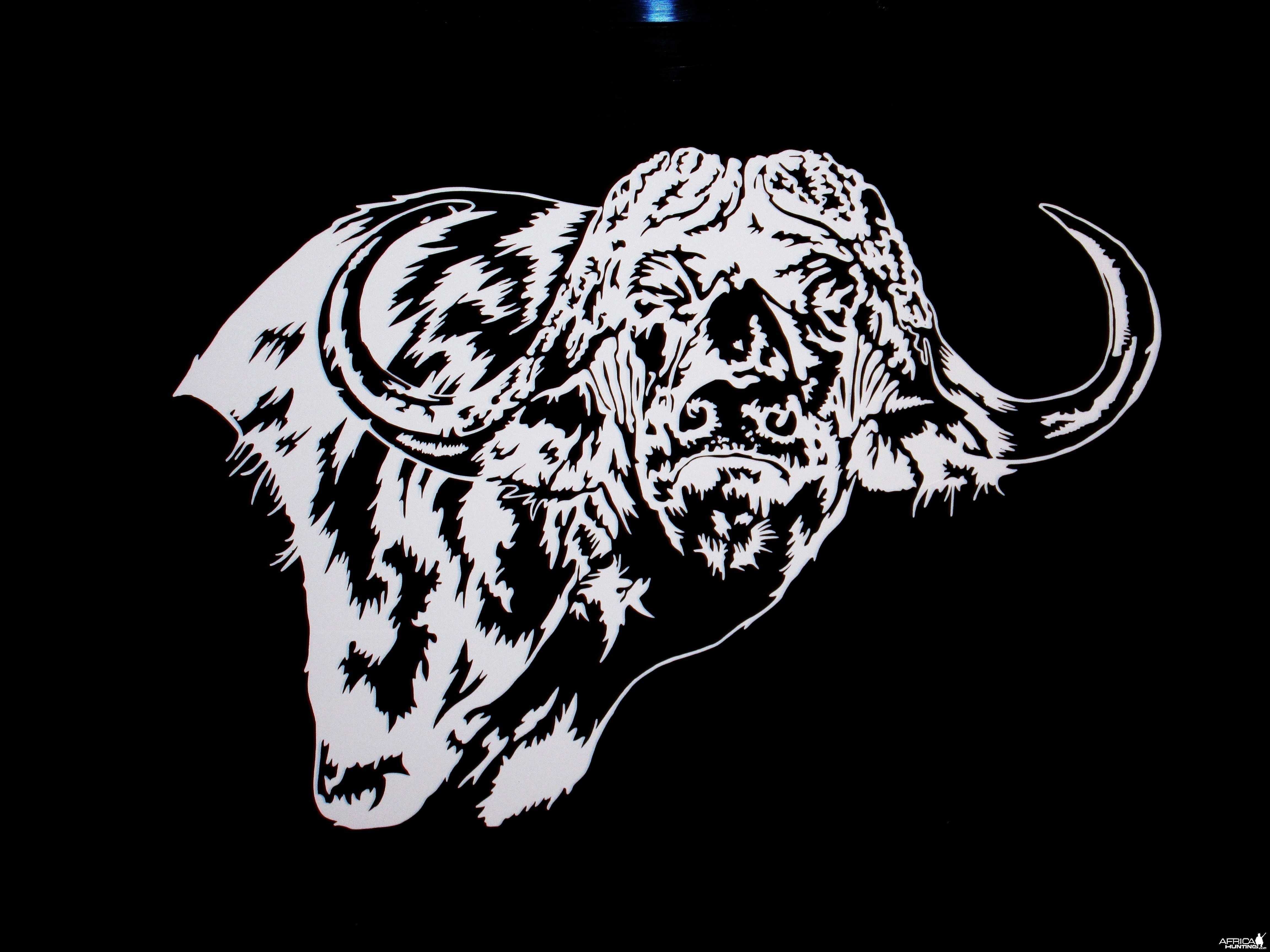 Buffalo Decal Stickers
