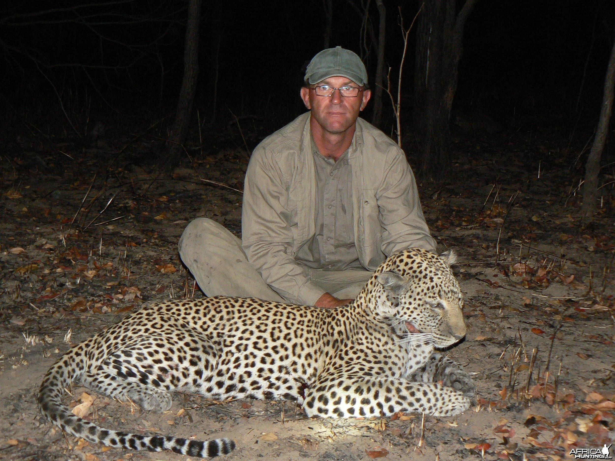 Very old leopard - Hunt Tanzania