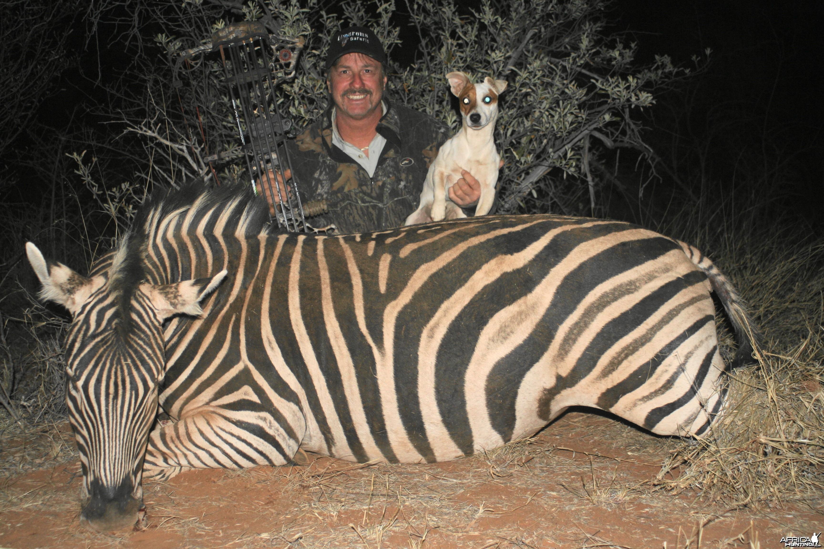 Zebra Limcroma Safaris 2013