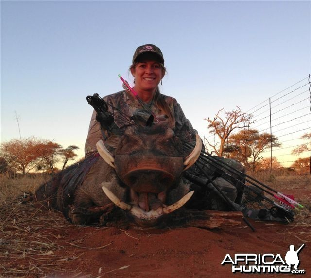 Warthog Limcroma Safaris 2013