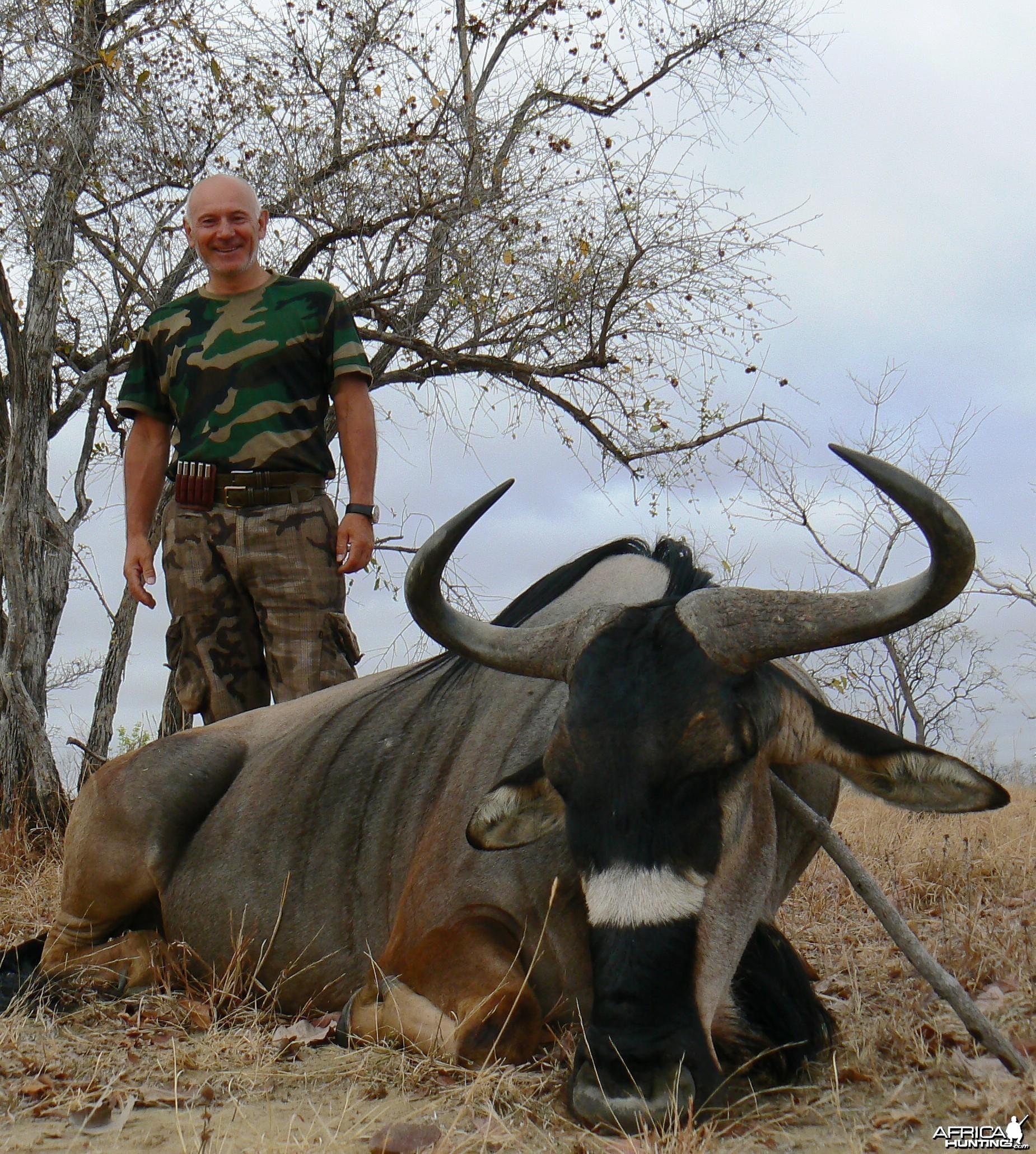 Nyasaland gnu - Hunting in Tanzania