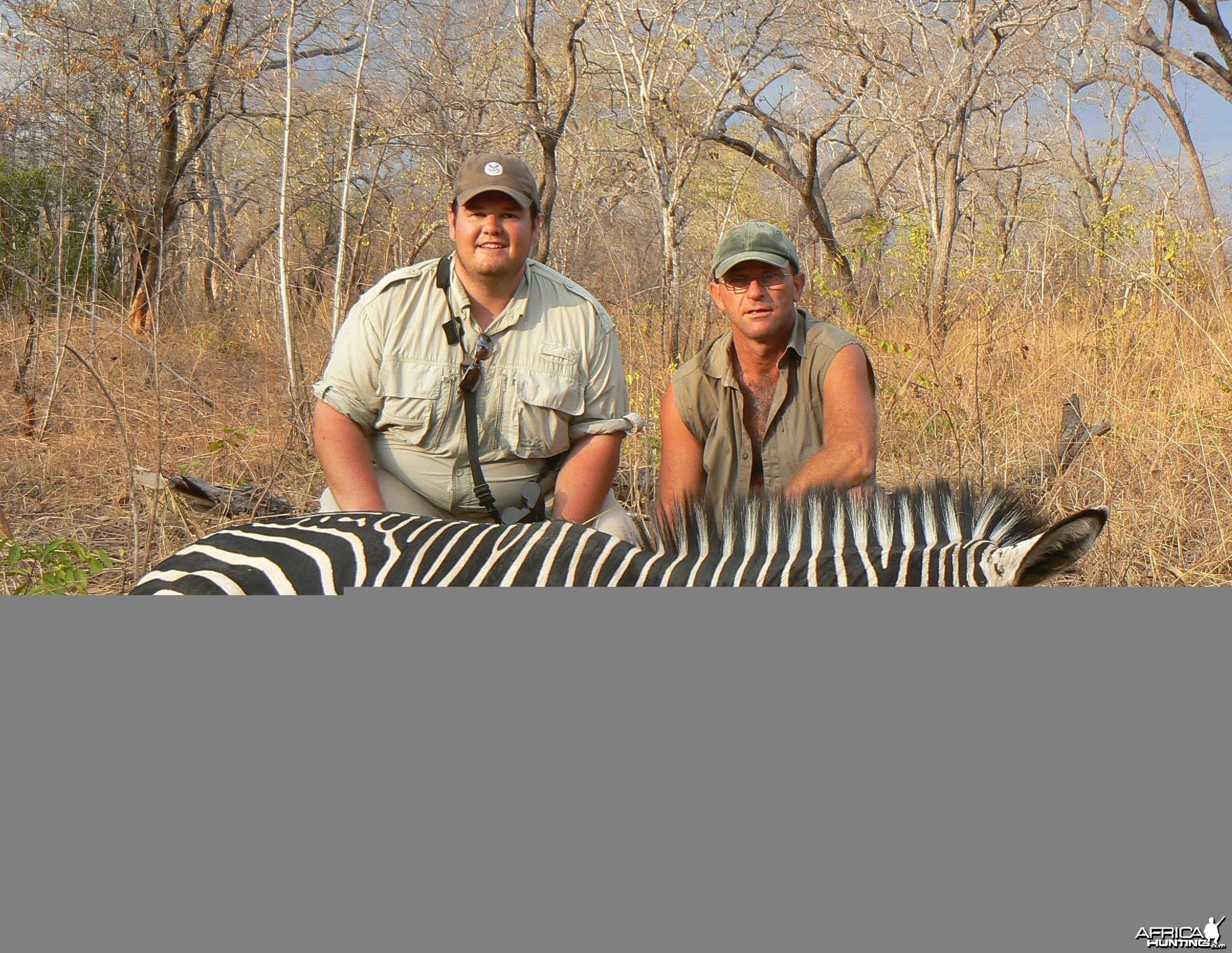Zebra from Tanzania