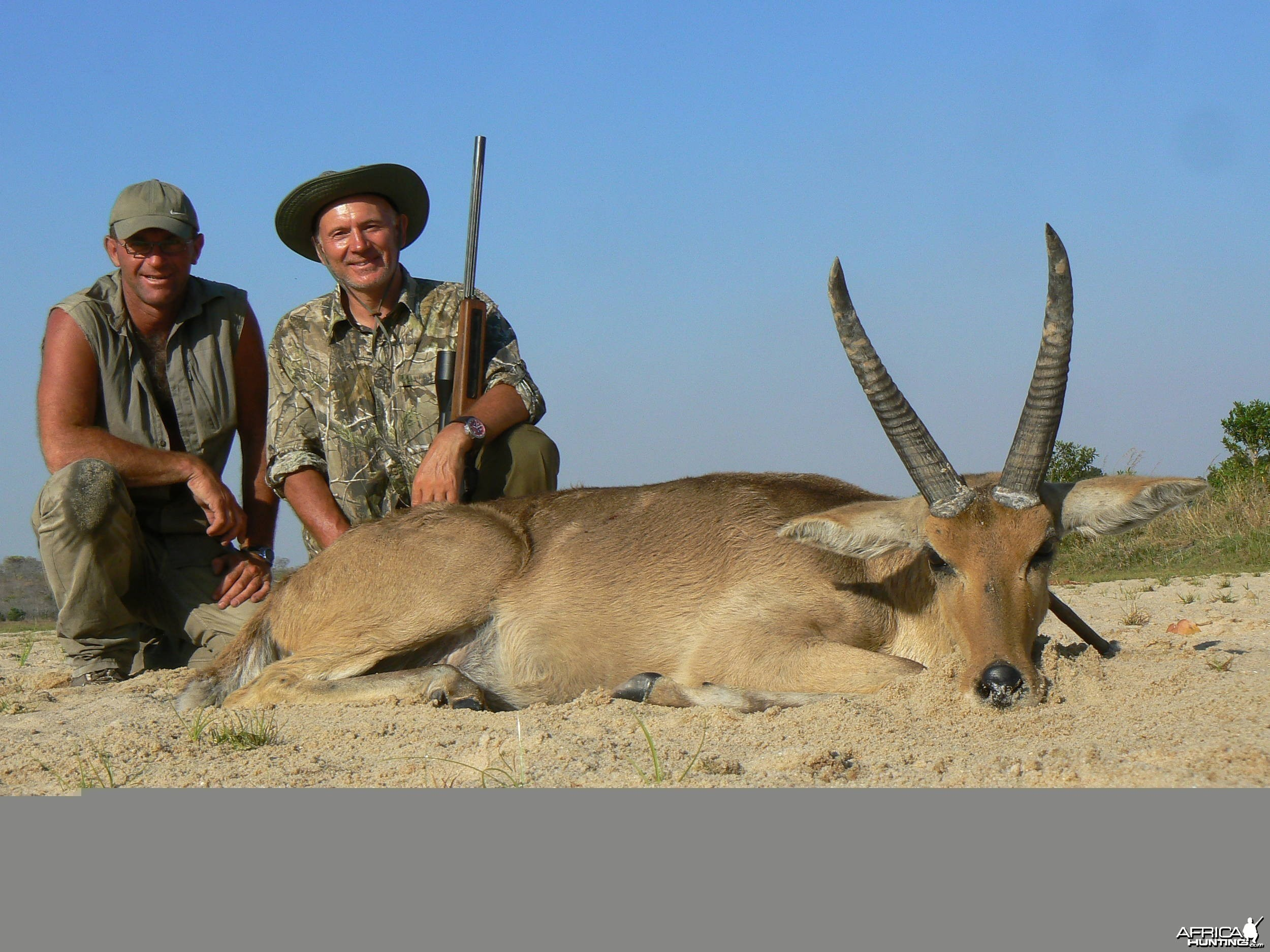 "13"" common reedbuck - Hunting in Tanzania"