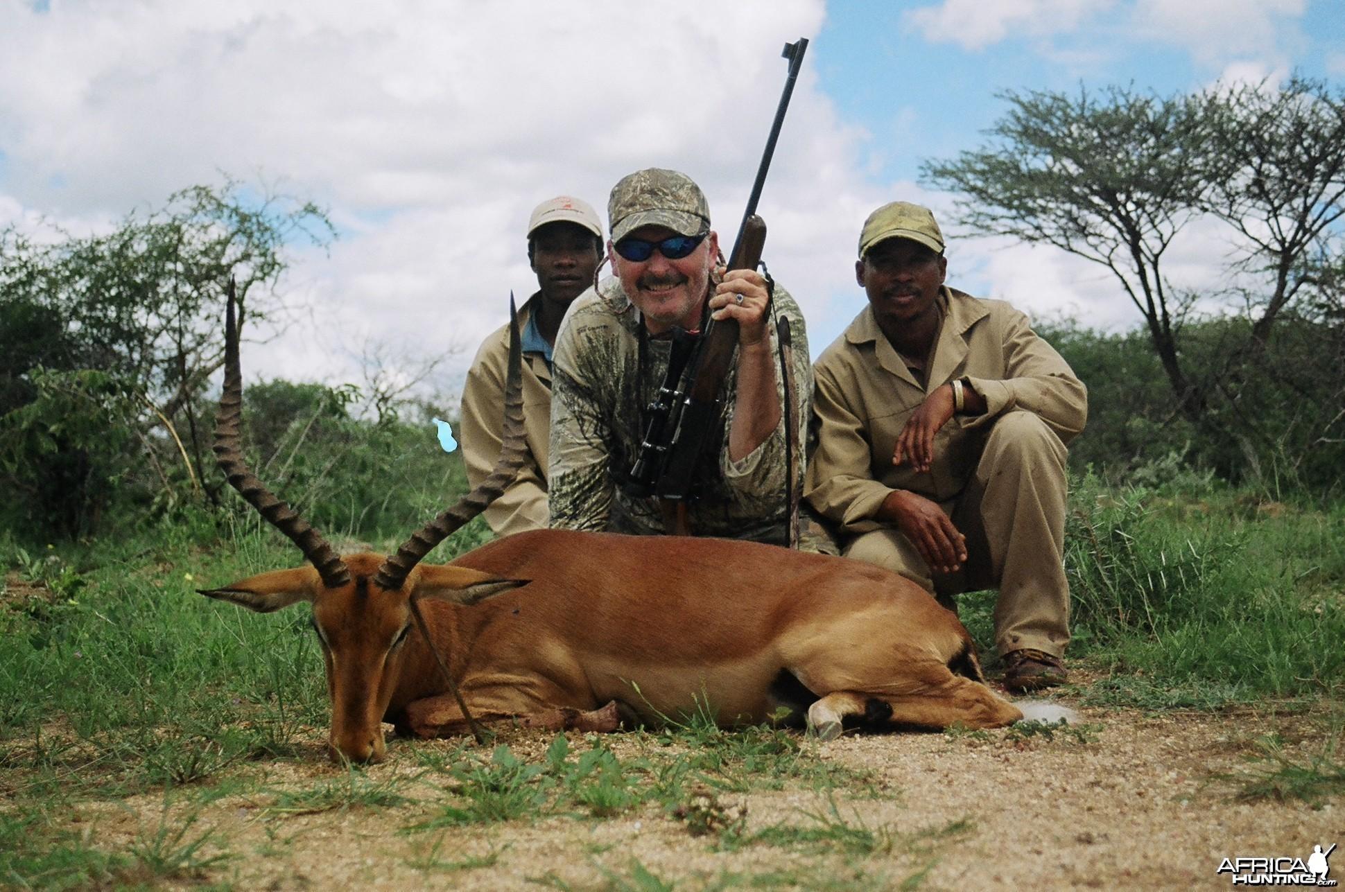 Impala/Namibia