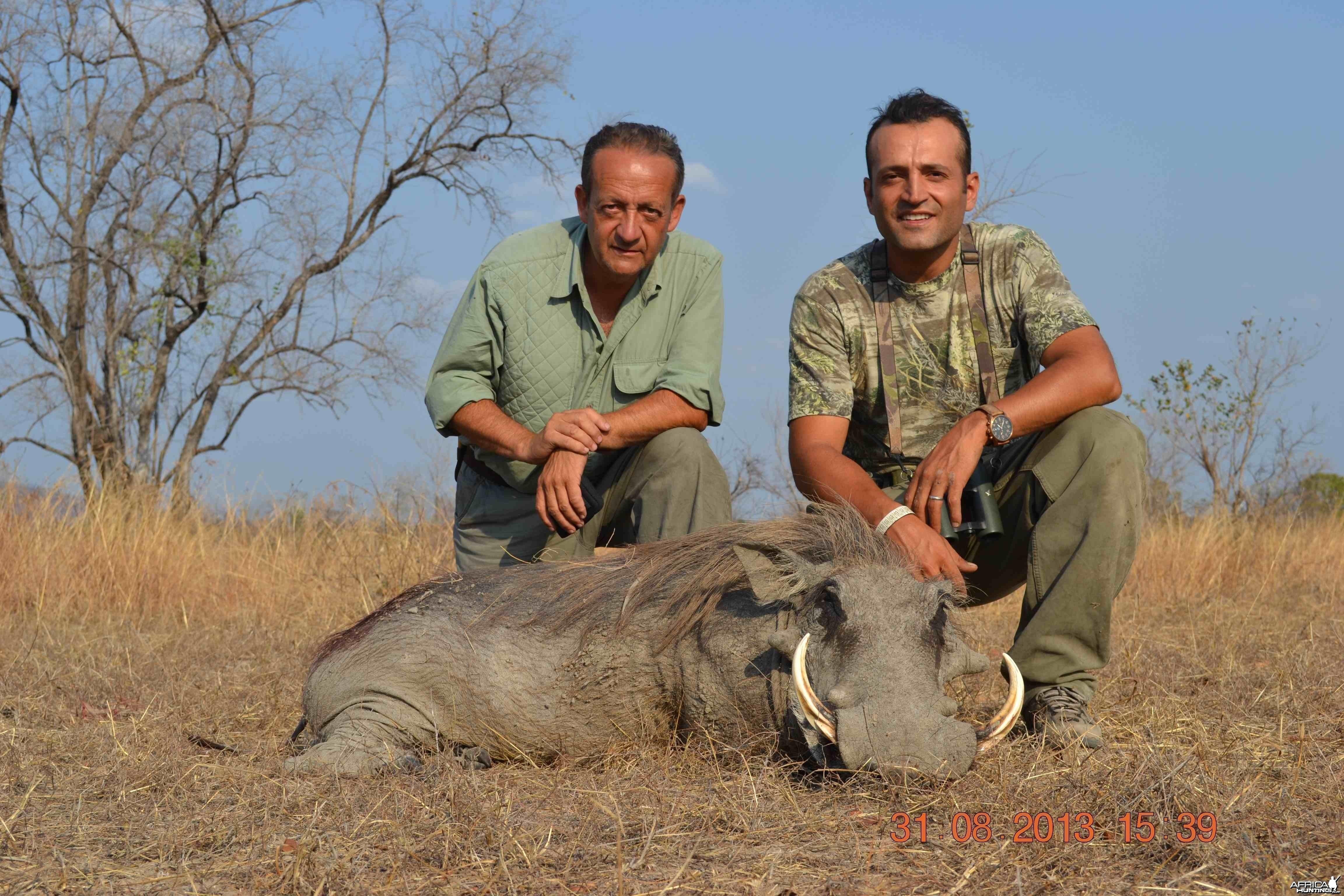 Warthog of 15''