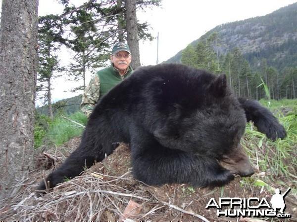 Black Bear Hunt in Canada