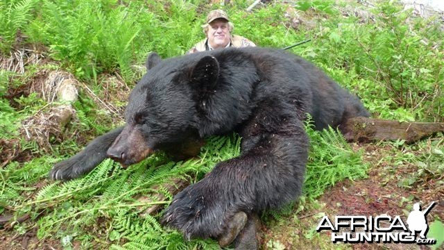 Black Bear Hunt in Canada