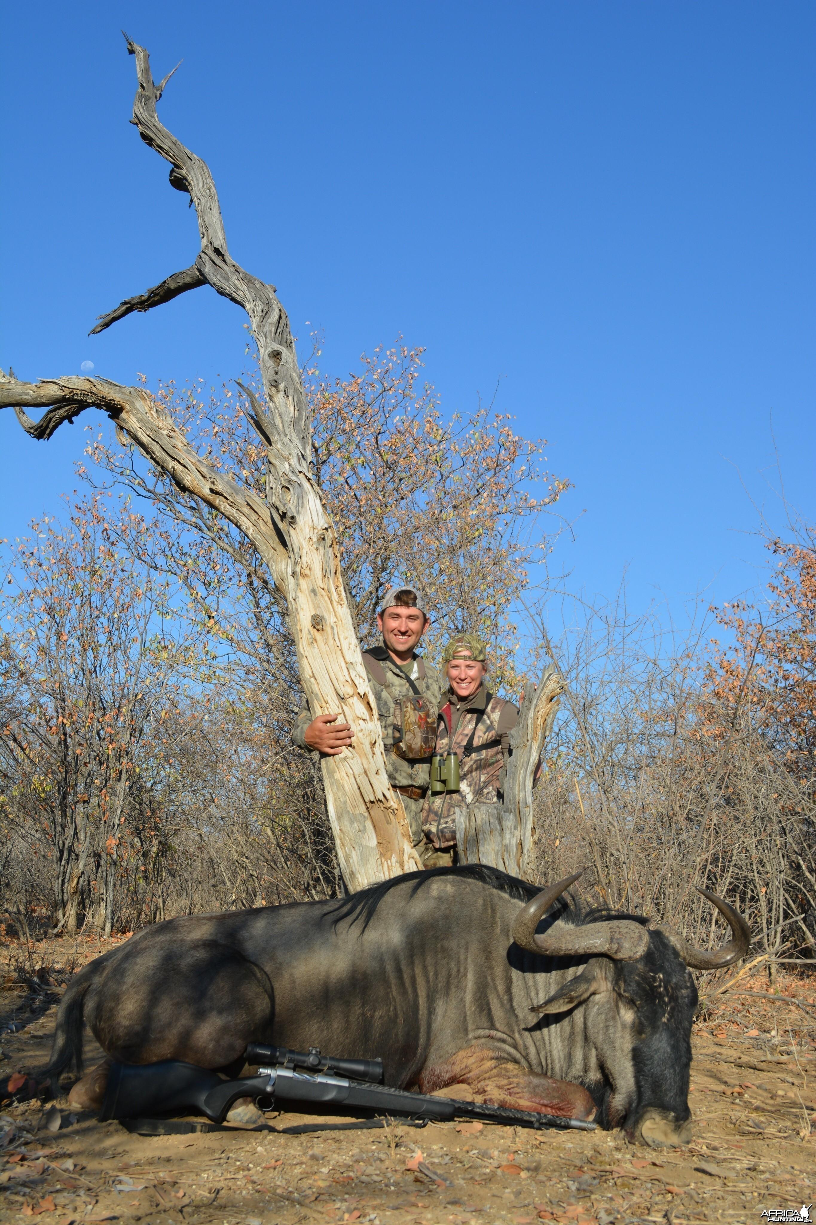 85 7/8 blue wildebeest Namibia