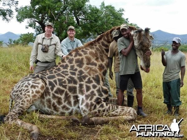 Giraffe with Kido Safaris