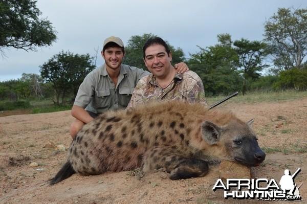 Hyena with Savanna Hunting Safari's