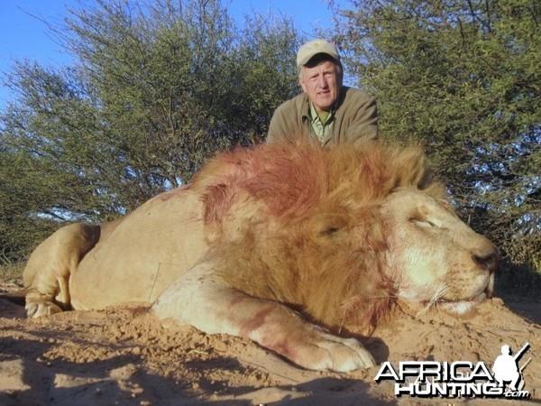 Lion with Savanna Hunting Safari's
