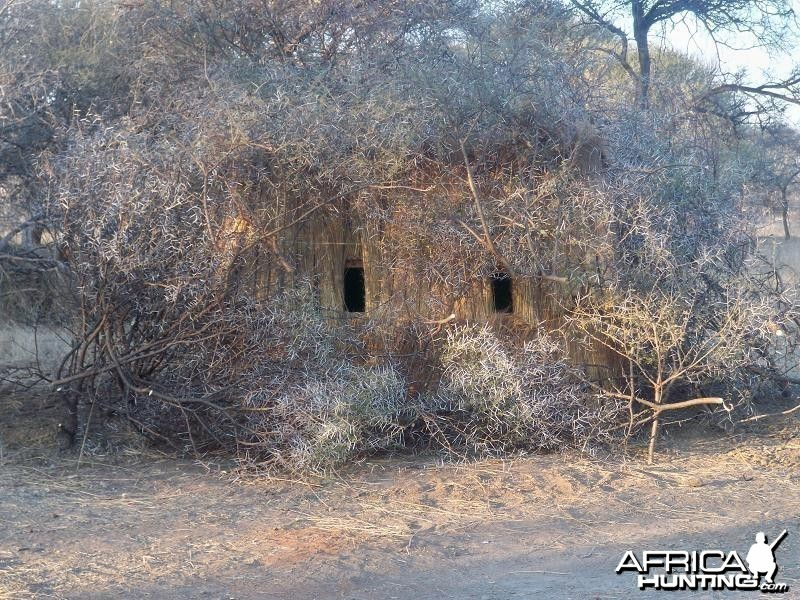 Life on Safari with Spiral Horn Safaris