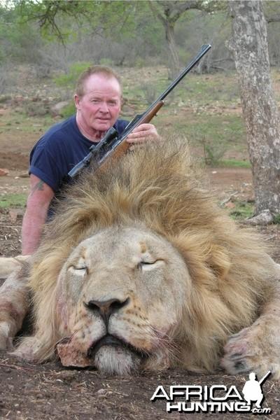 Lowveld Lion