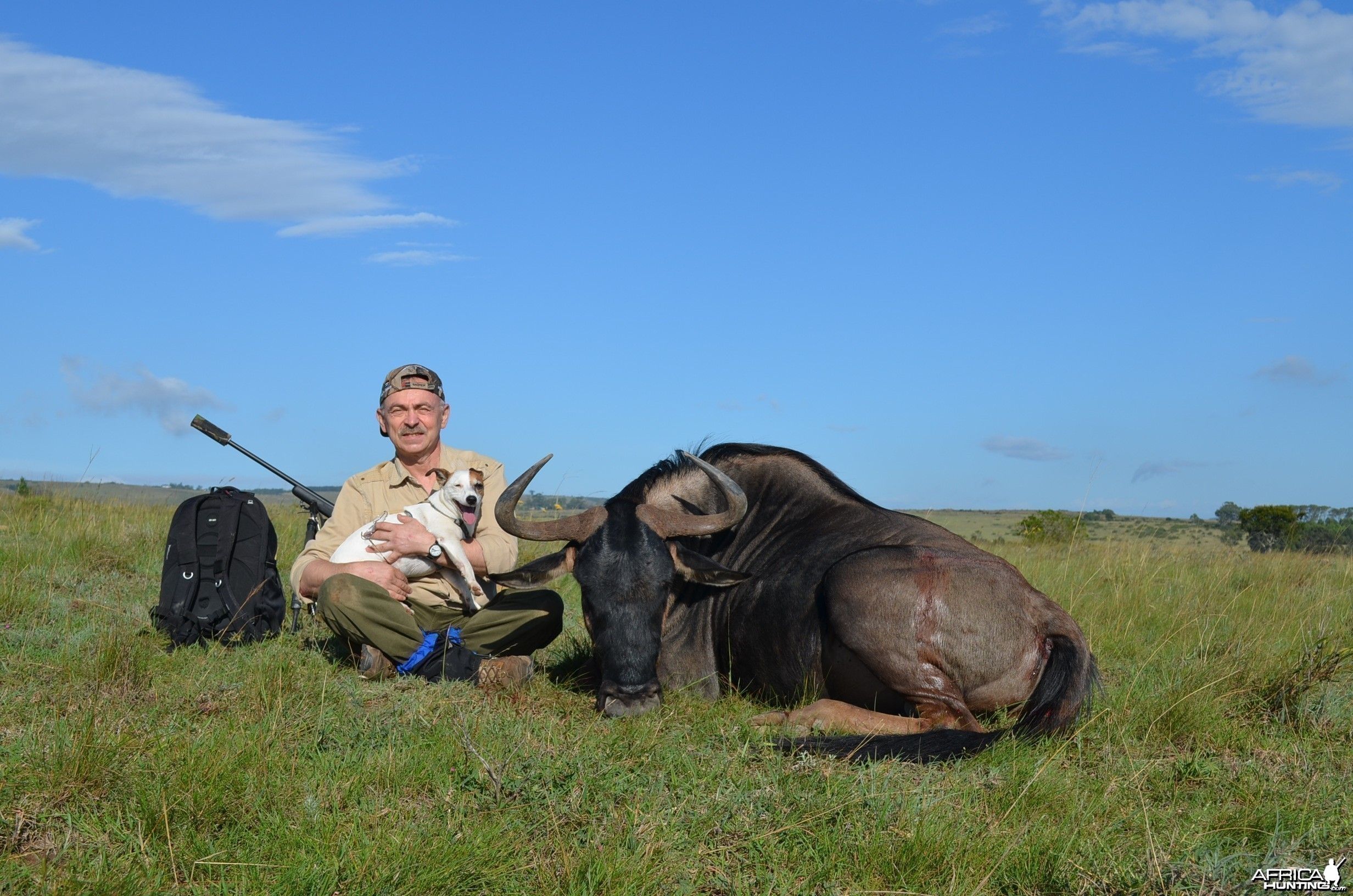Blue Wildebeest KMG Hunting Safaris