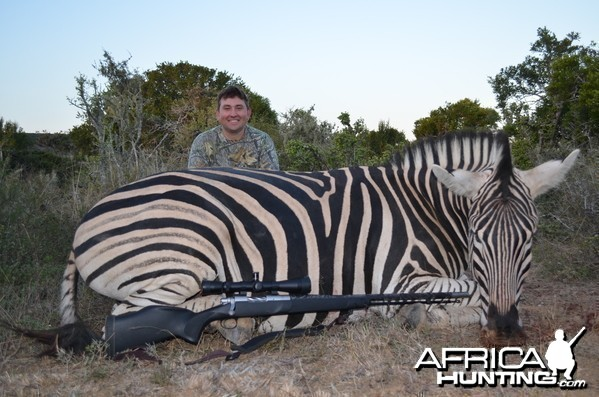 Zebra KMG Hunting Safaris