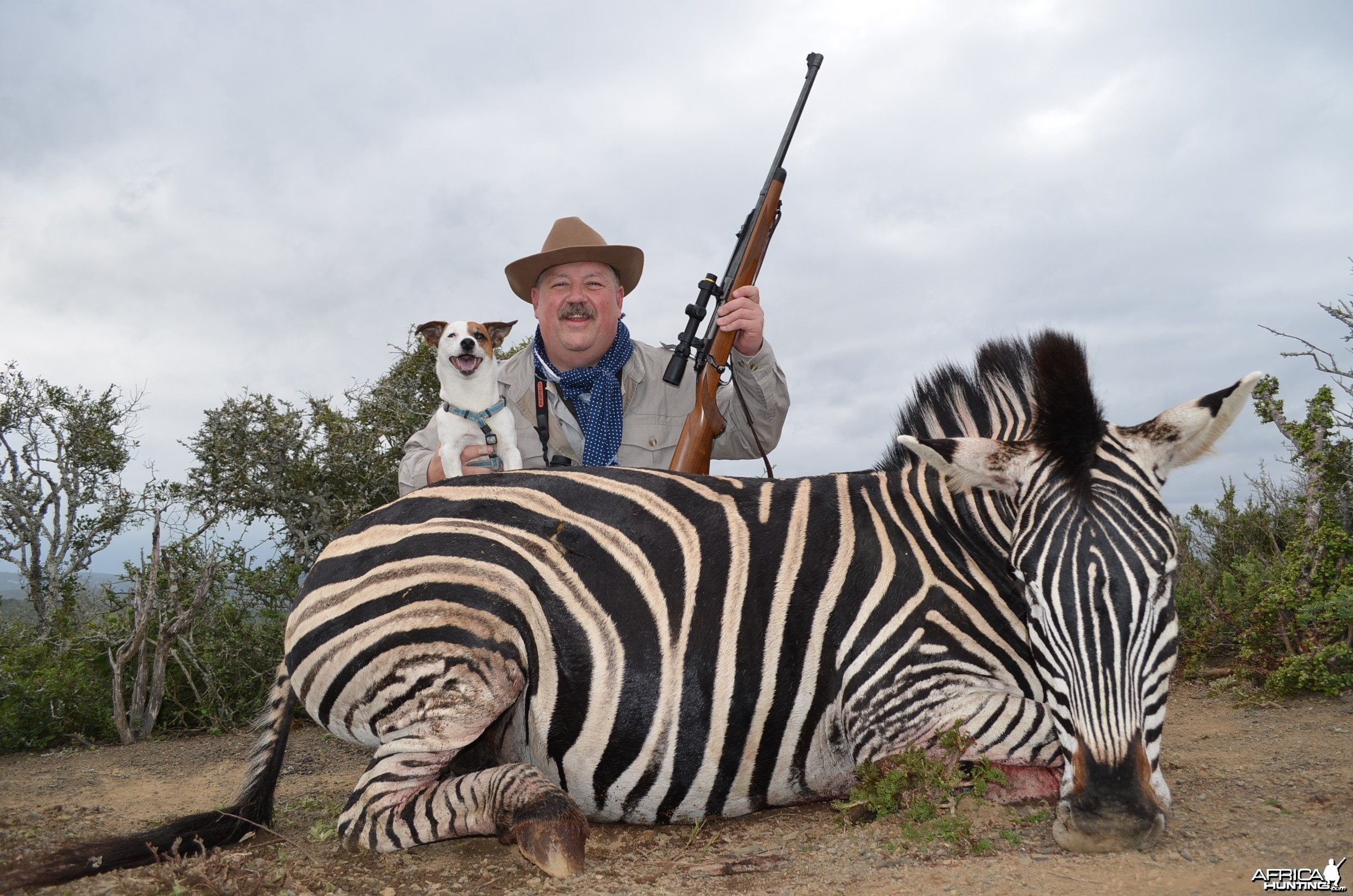 Zebra KMG Hunting Safaris