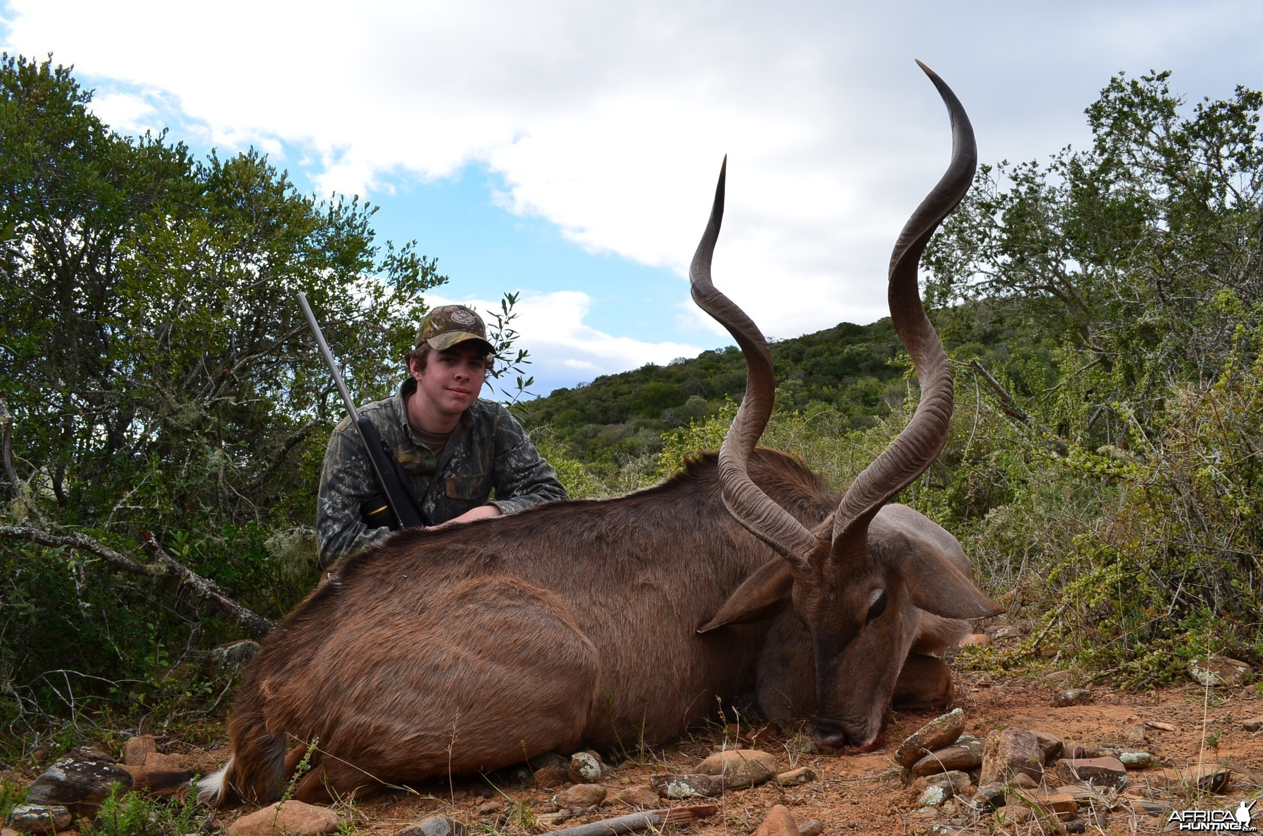 Kudu KMG Hunting Safaris