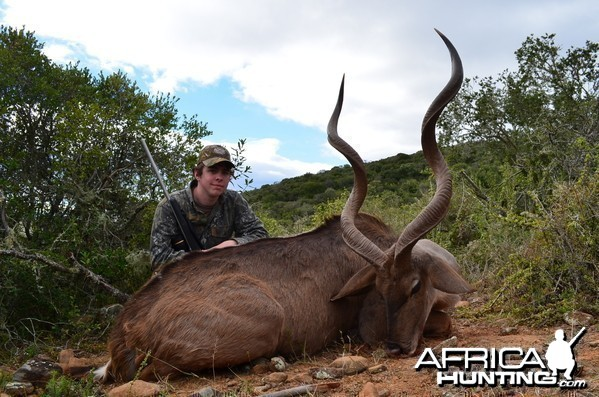 Kudu KMG Hunting Safaris